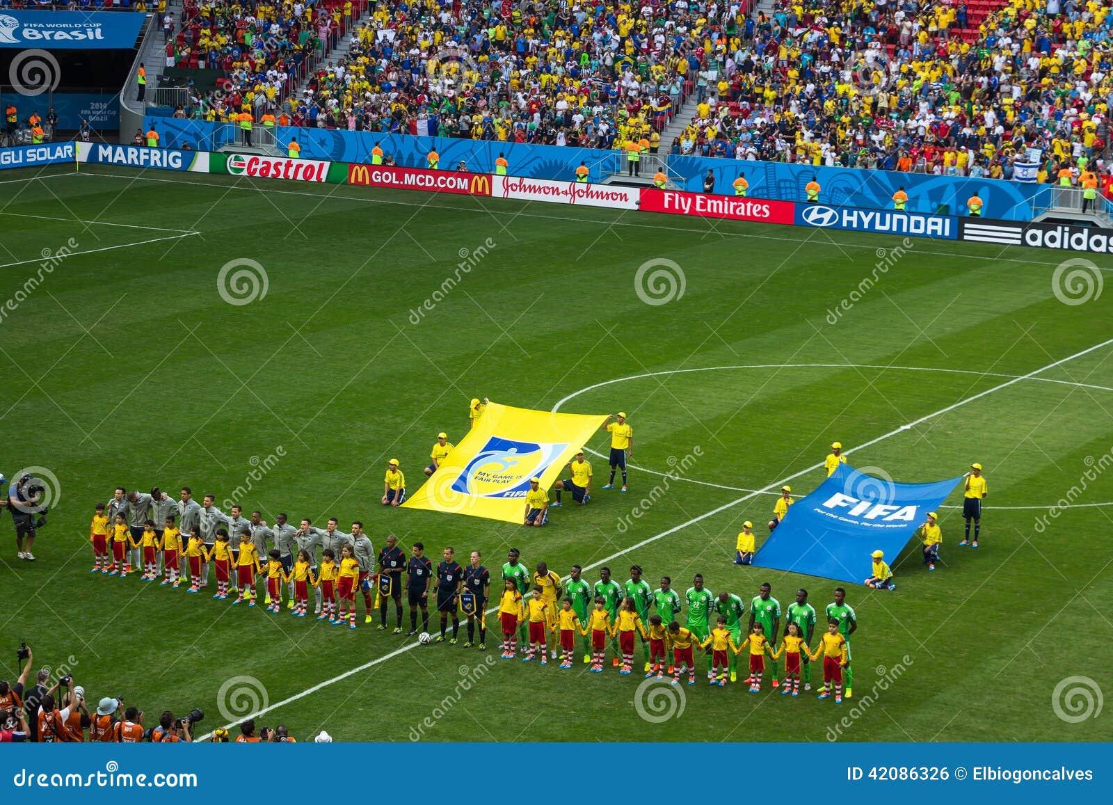 法国和尼日利亚 比赛世界杯足球赛巴西2014年