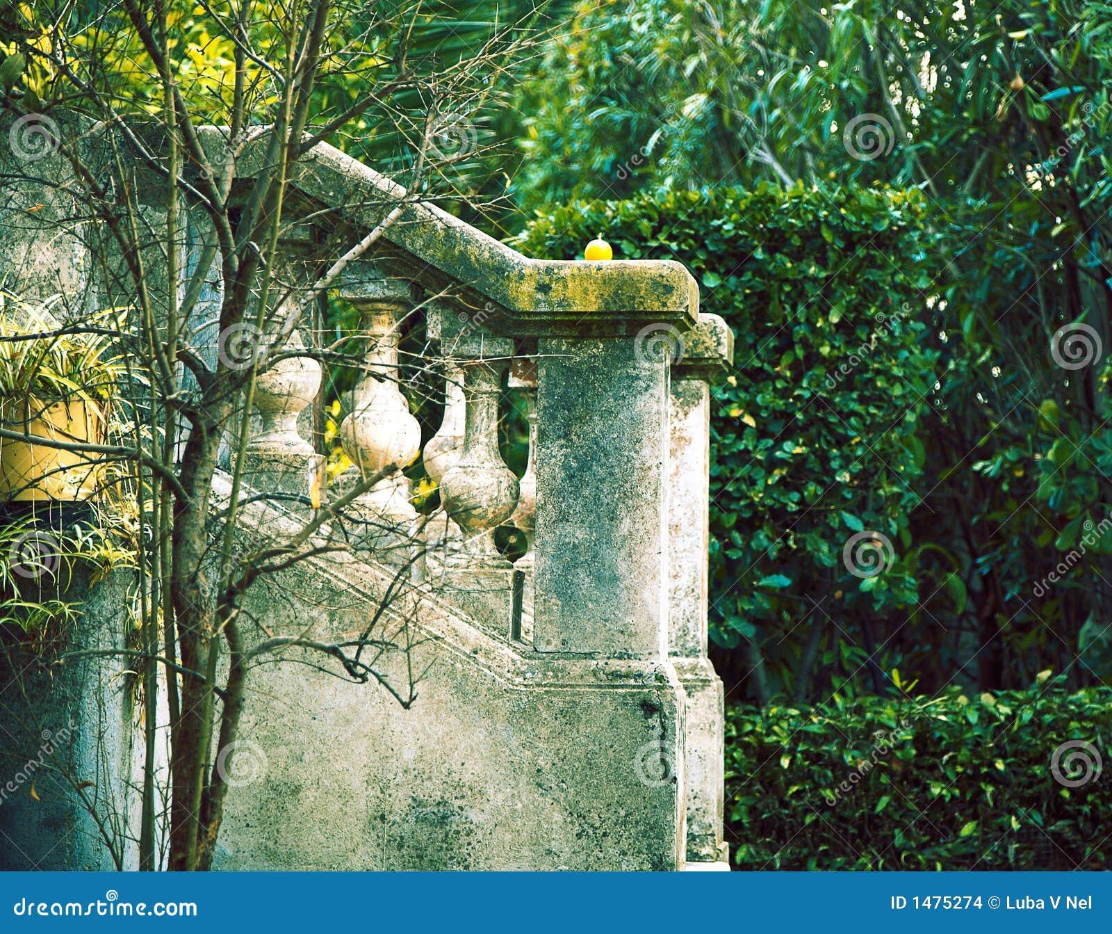 法国庭院绿色