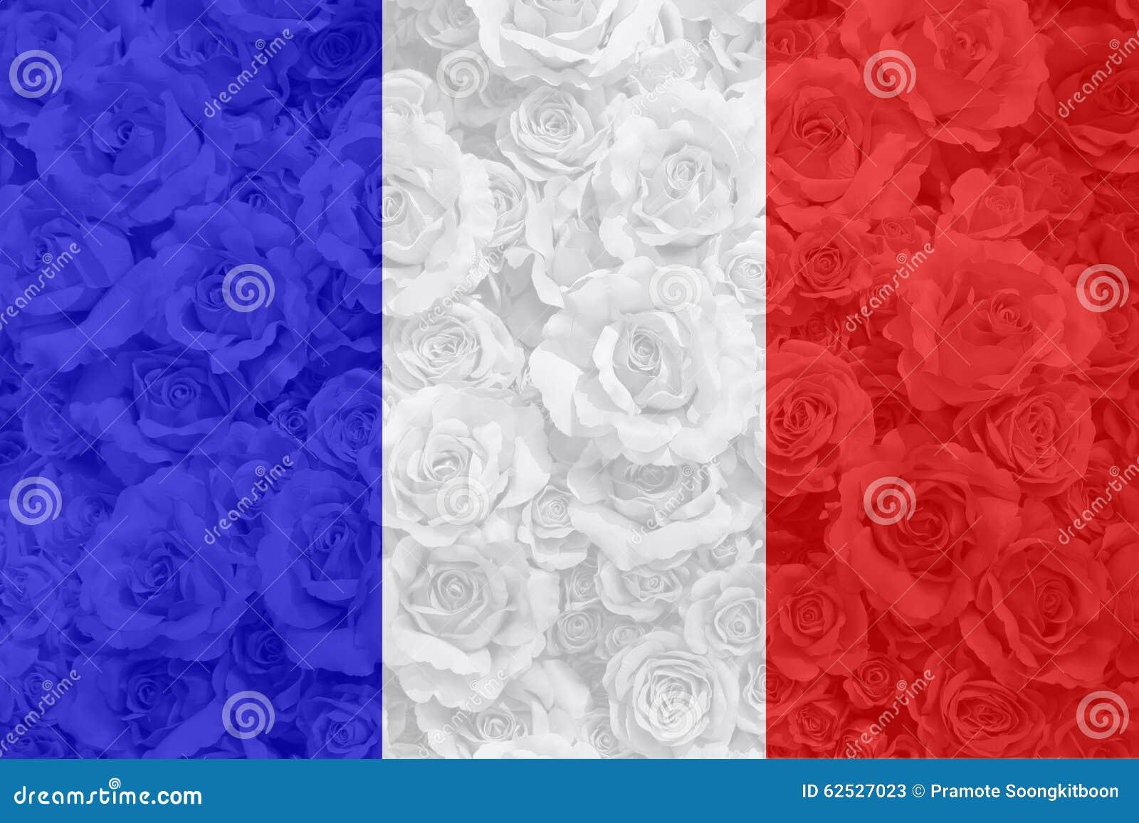 法国旗子有玫瑰色背景