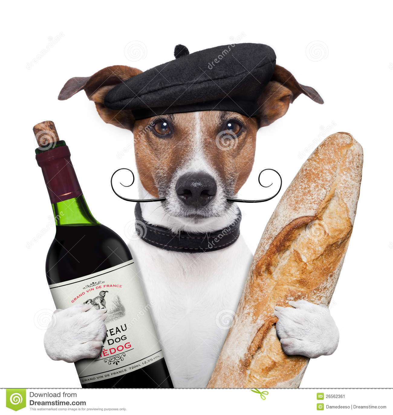 法国狗酒baguete贝雷帽