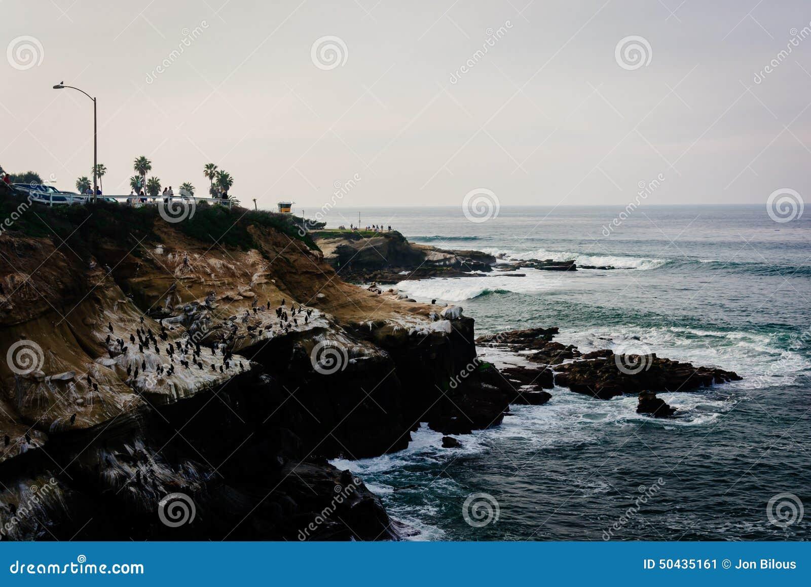 波浪在沿太平洋的峭壁碰撞在拉霍亚, Calif
