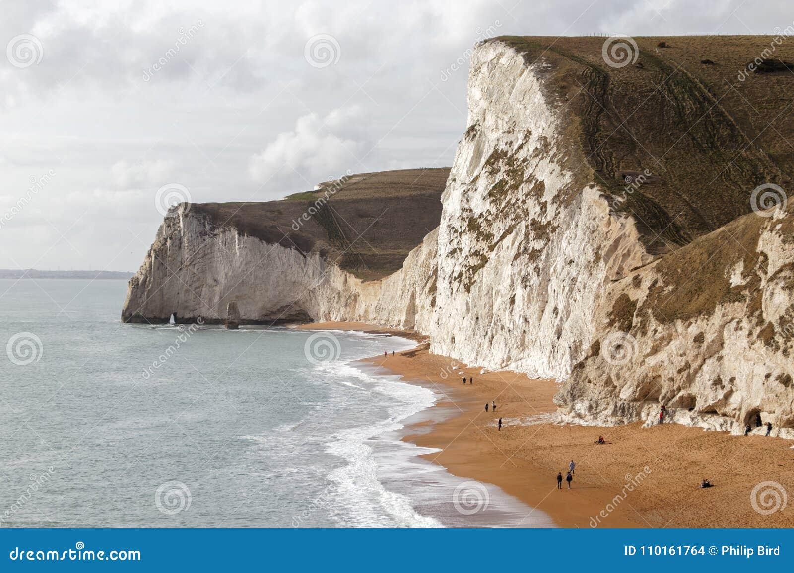 波特兰比尔, DORSET/UK - 2月16日:侏罗纪C的看法
