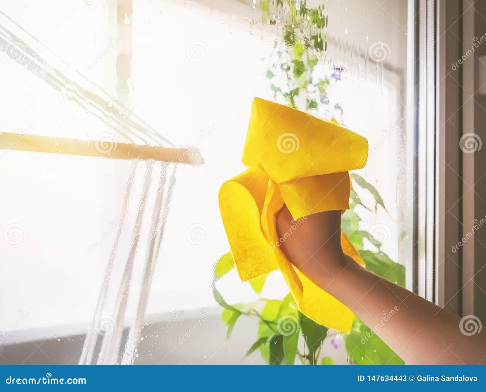 洗涤与旧布的年轻女人一个窗口