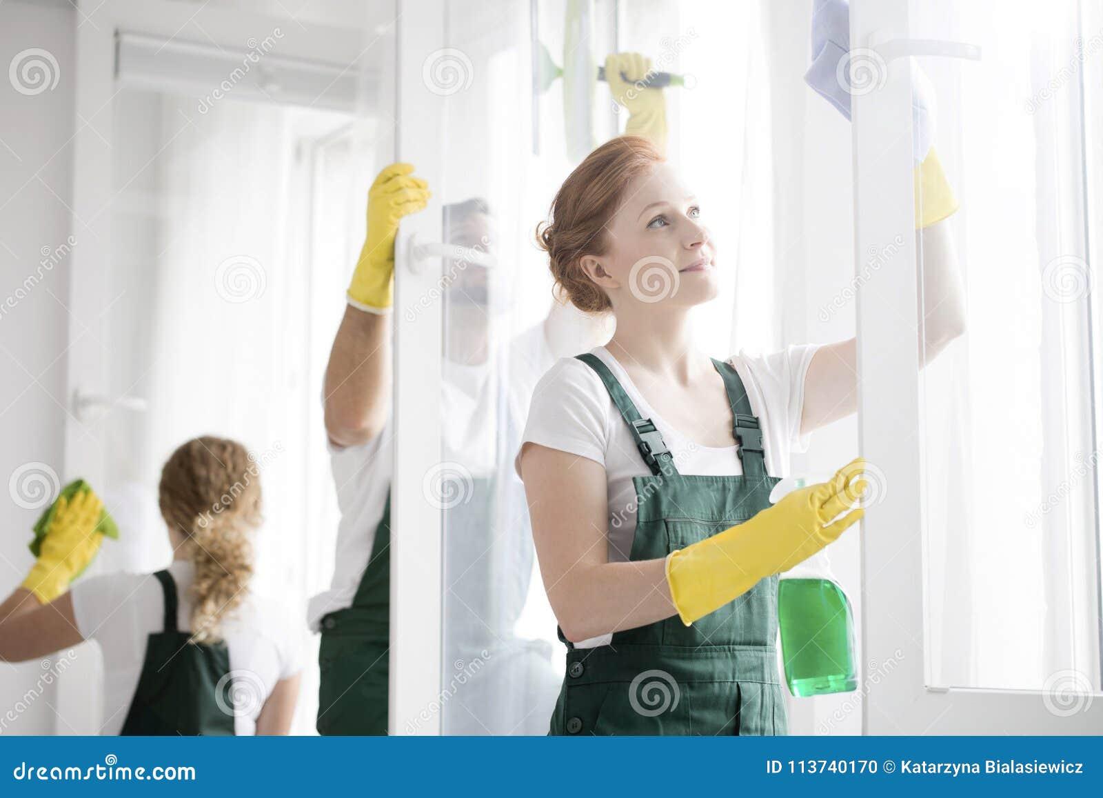 洗涤窗口的擦净剂