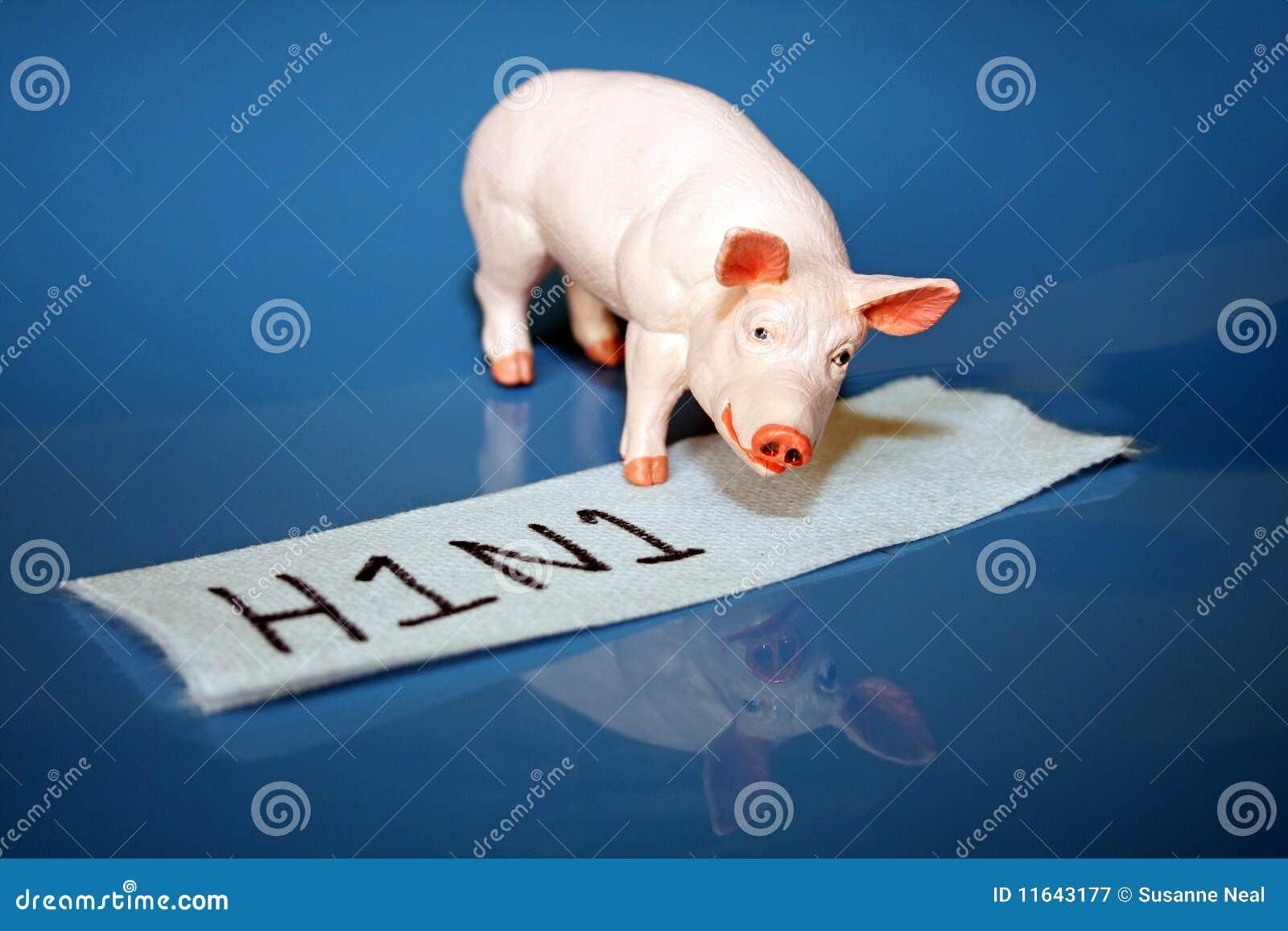 中国研究人员发现新型猪流感病毒