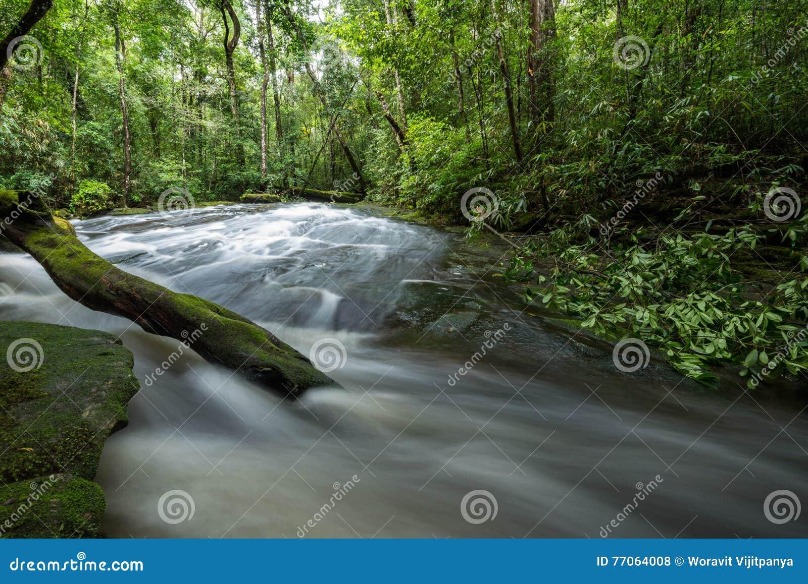 流本质泰国水