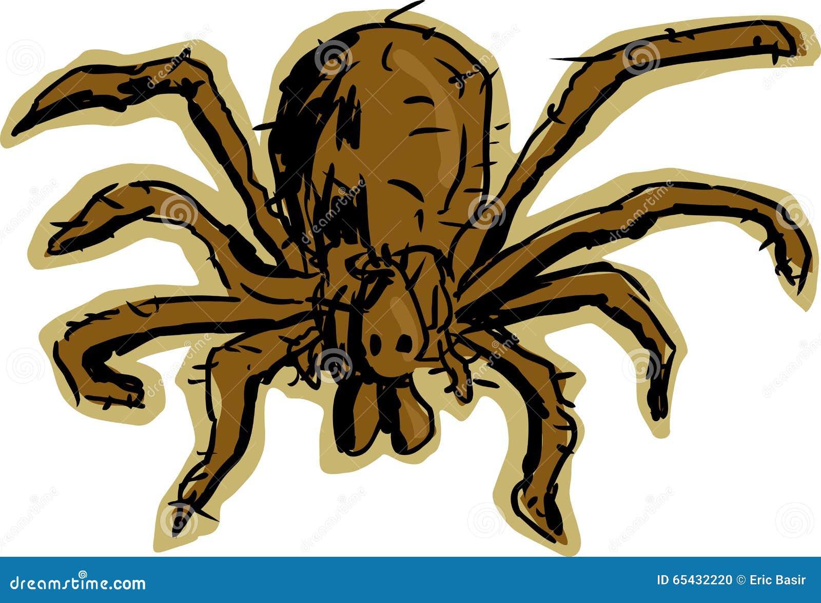 流浪汉蜘蛛