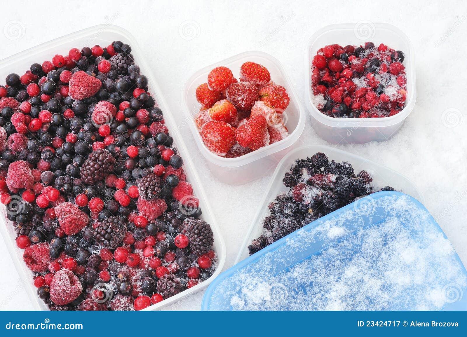 浆果容器冻结的混杂的塑料雪