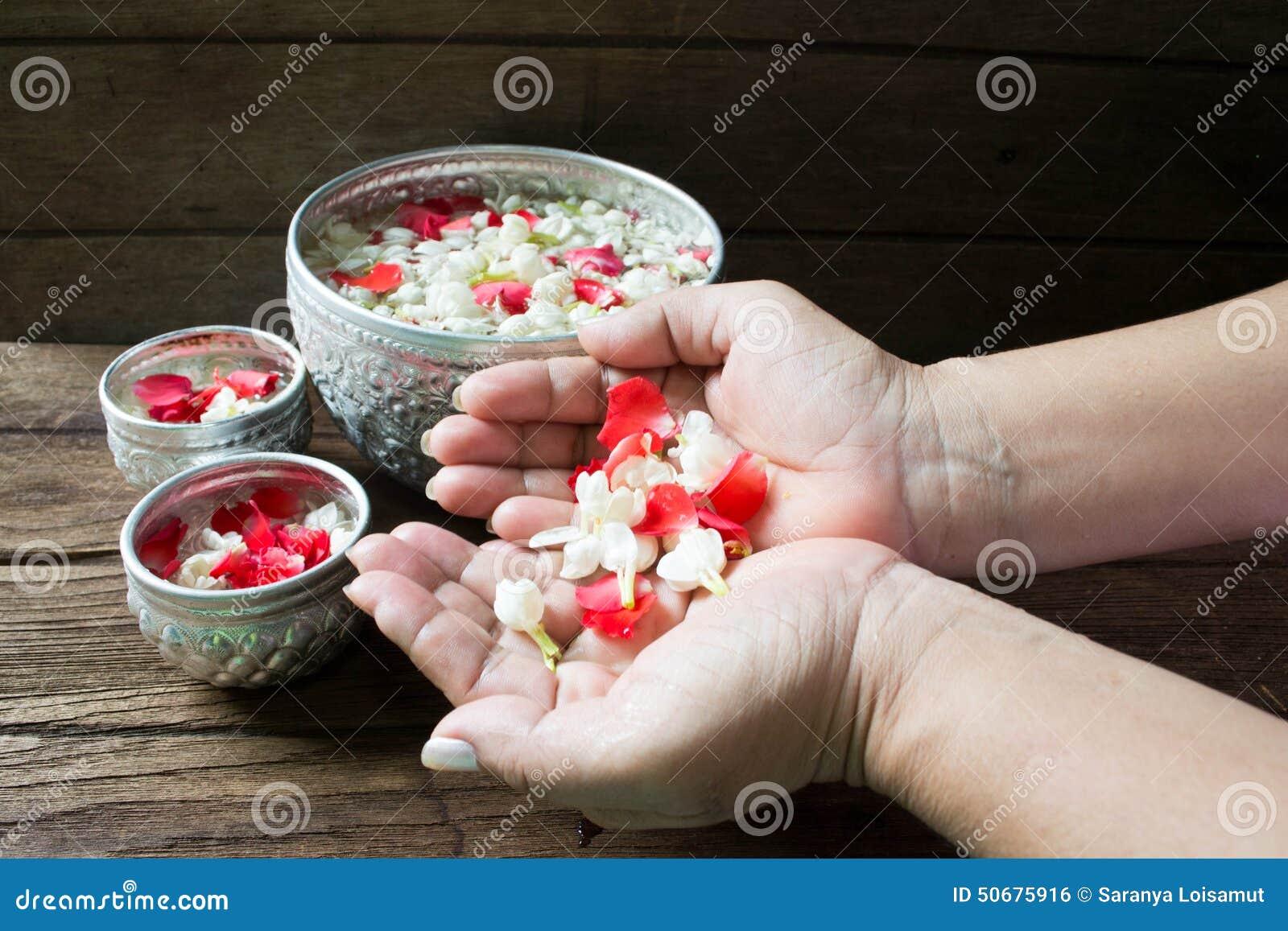 Download 浇灌在与香水混合的碗并且开花Songkra的花冠 库存照片. 图片 包括有 颜色, 佛教, 发芽, 祈祷 - 50675916