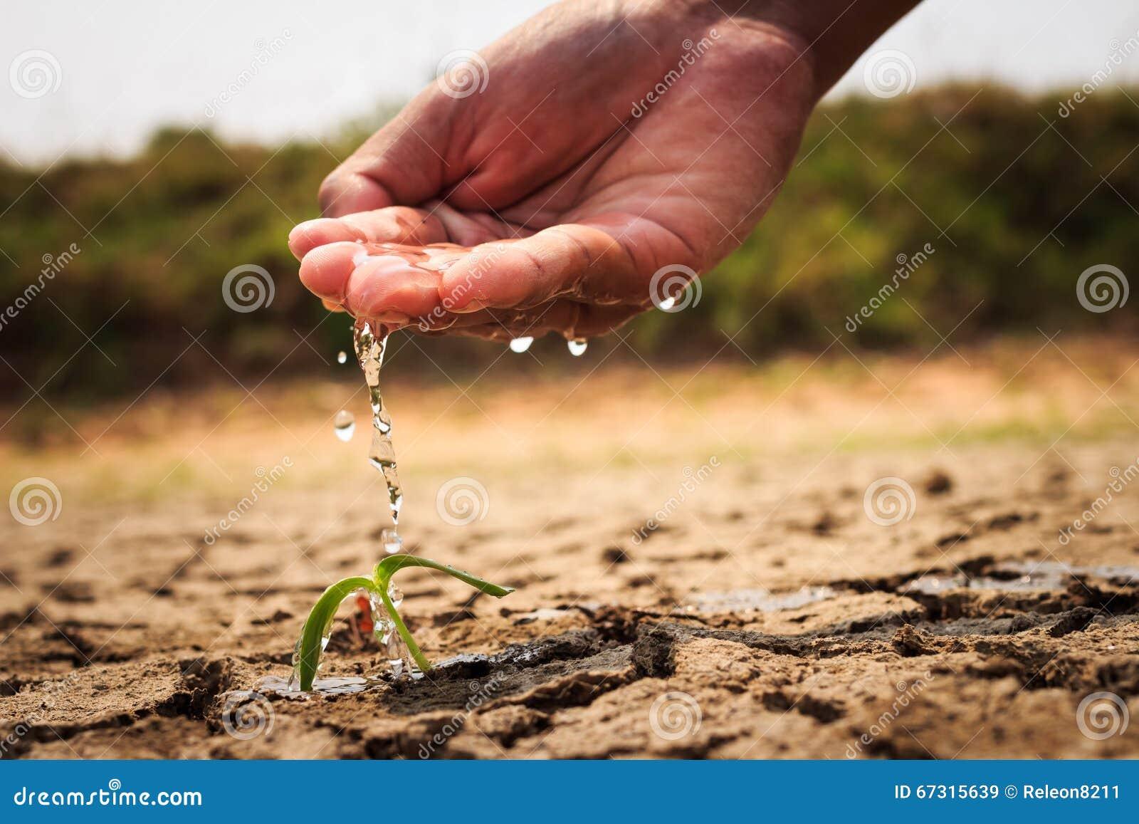 浇灌地面的手贫瘠