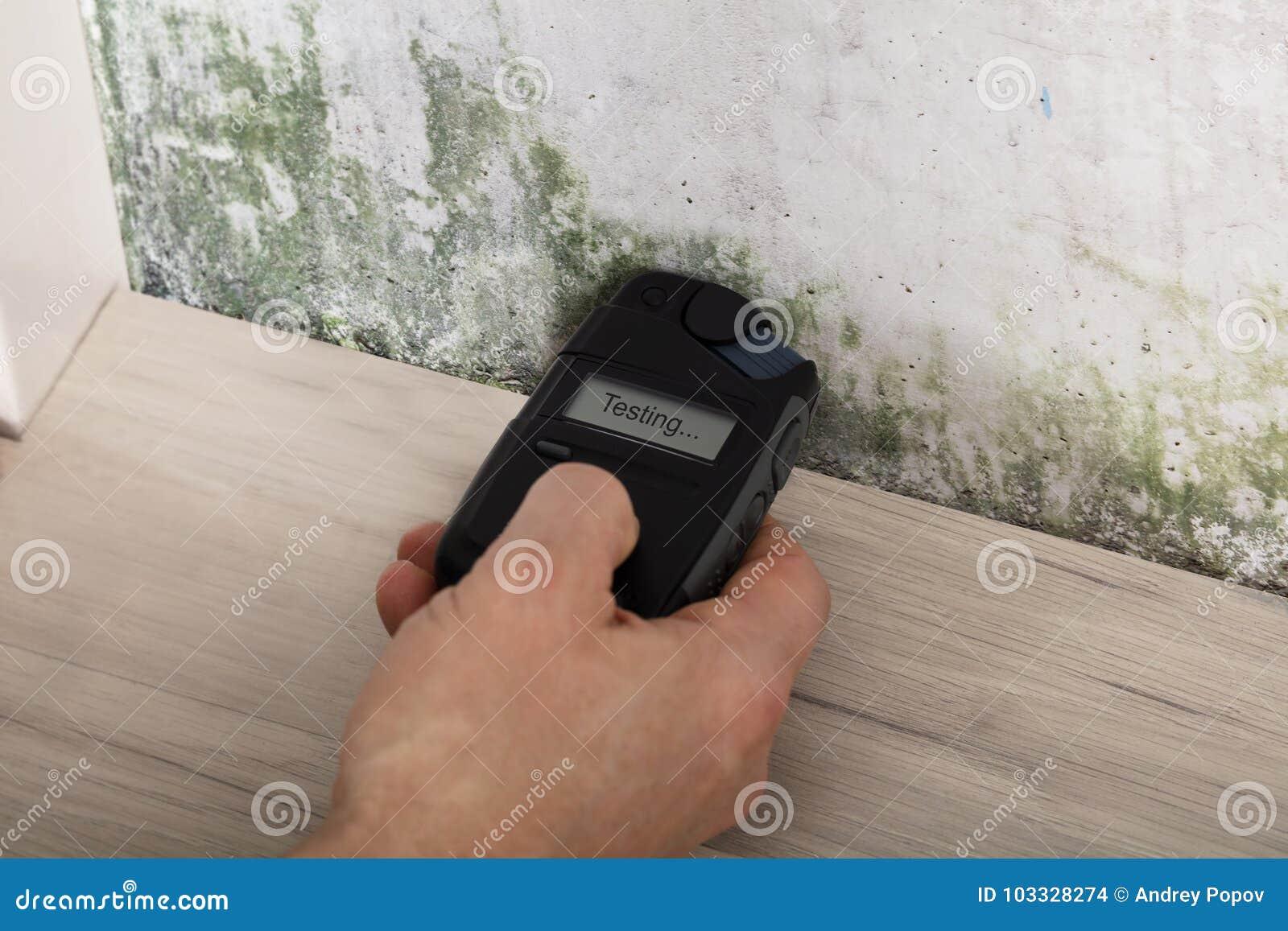 测试发霉的墙壁的人手