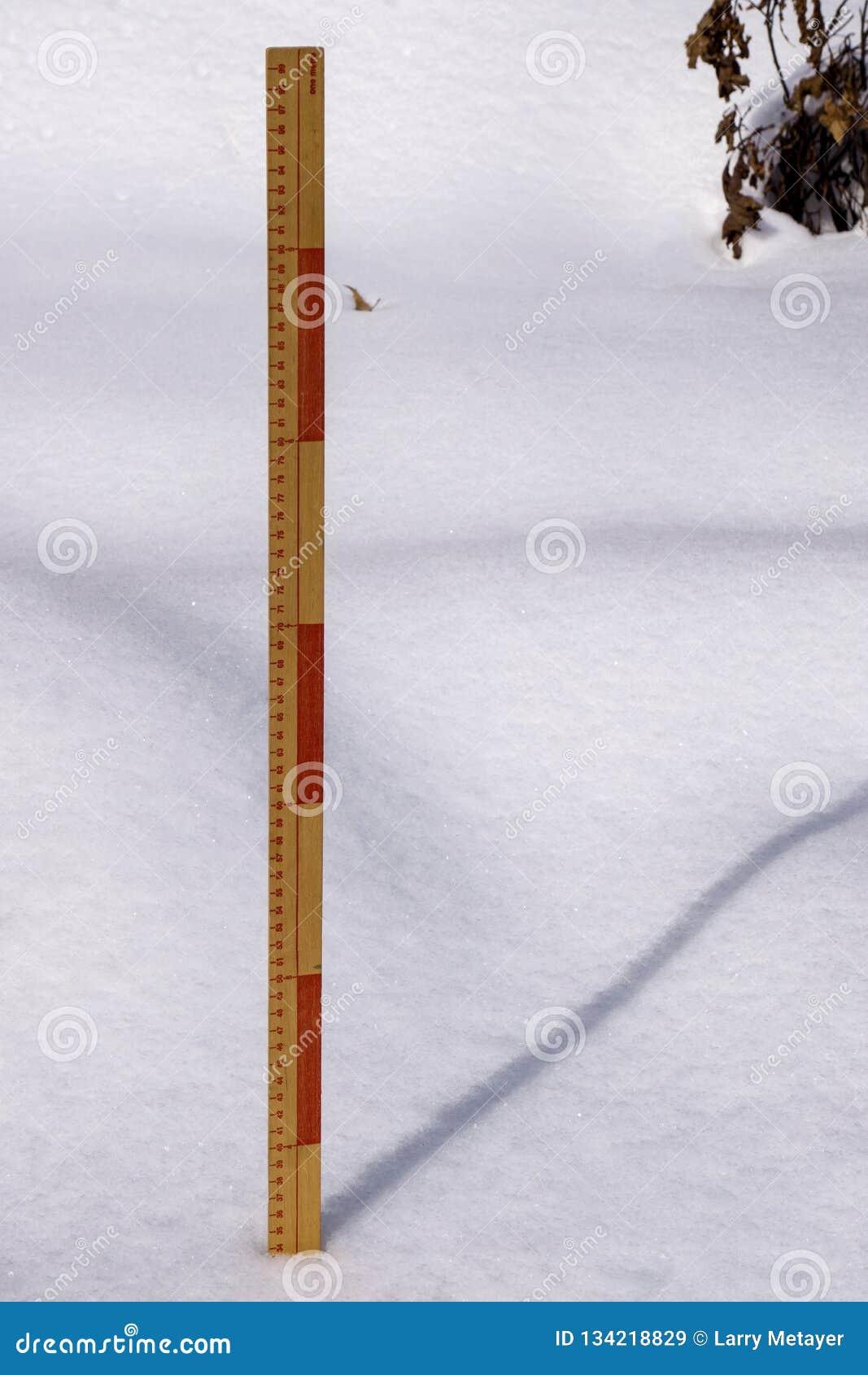 测量的冬天降雪