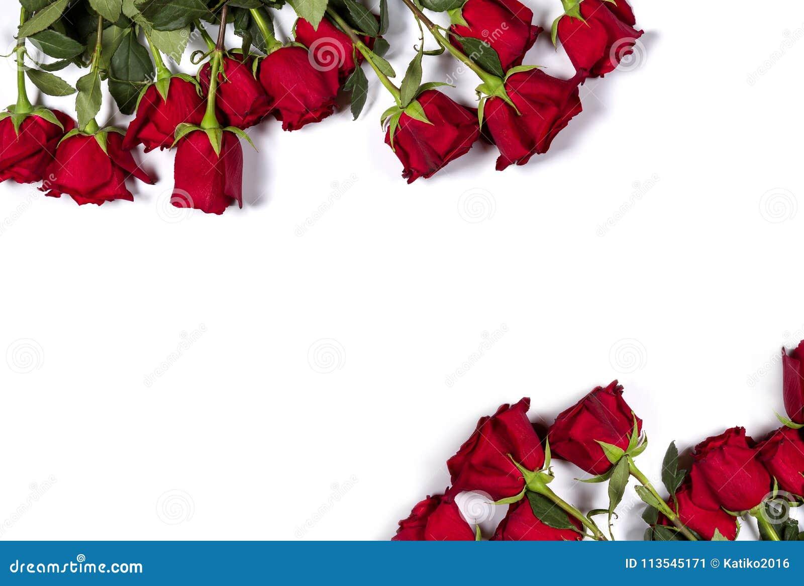 浪漫大模型 花卉框架由美丽的大英国兰开斯特家族族徽做成在白色背景 您空间的文本 顶视图