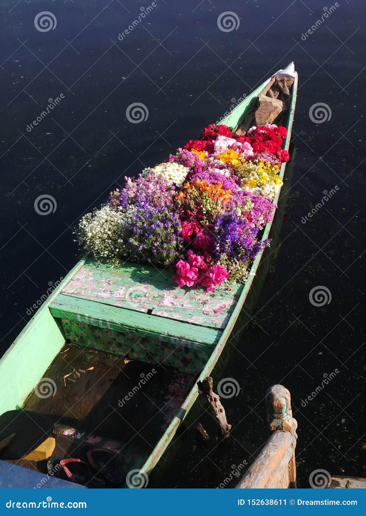 浮动花市场在克什米尔