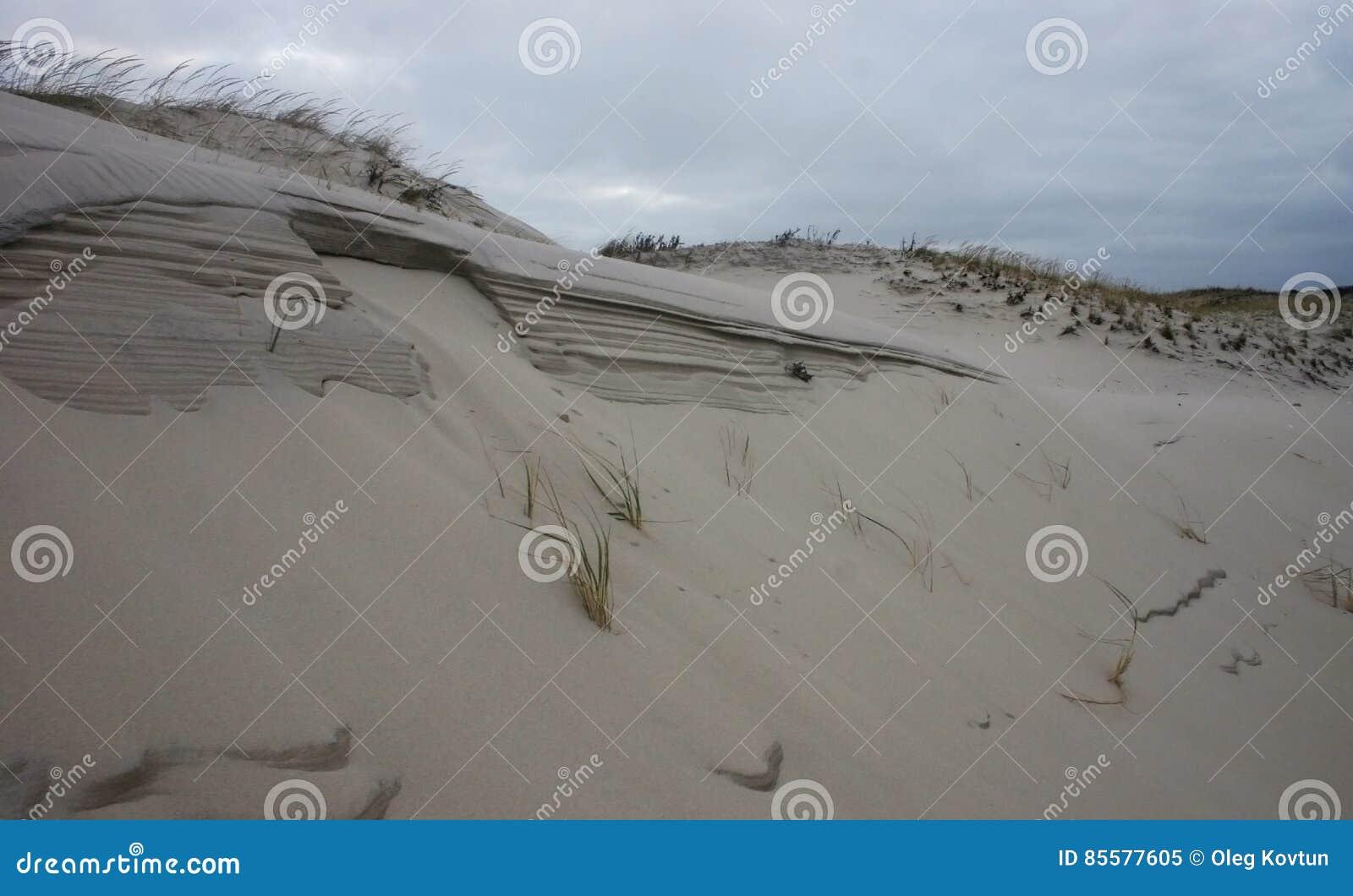 海岛海滩国家公园 英里沙丘和白色含沙bea