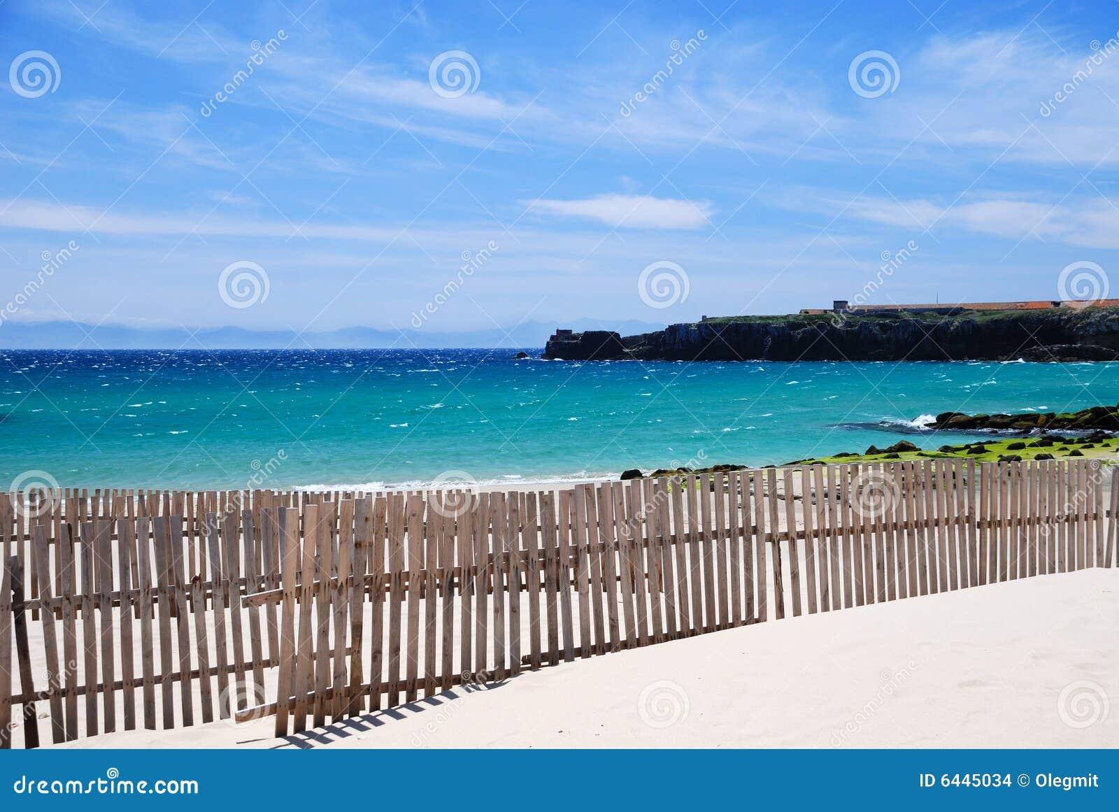 海岸强劲的西班牙tarifa