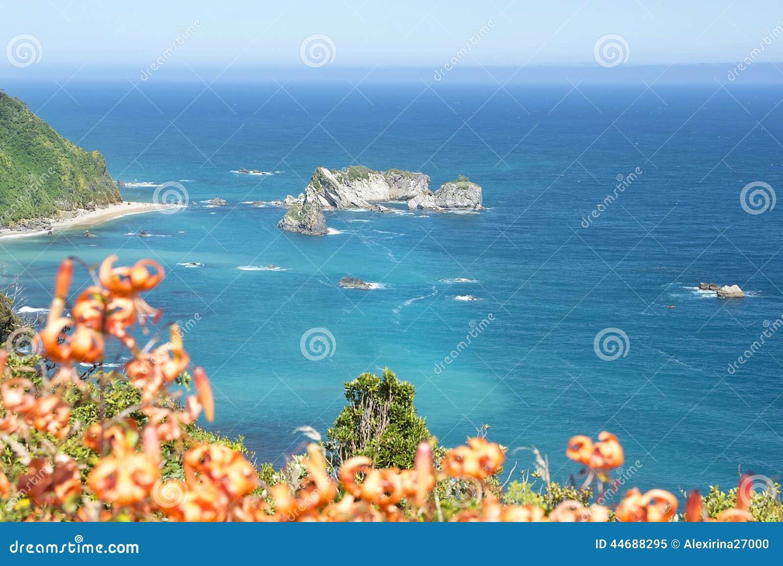 海岸新的西方西兰