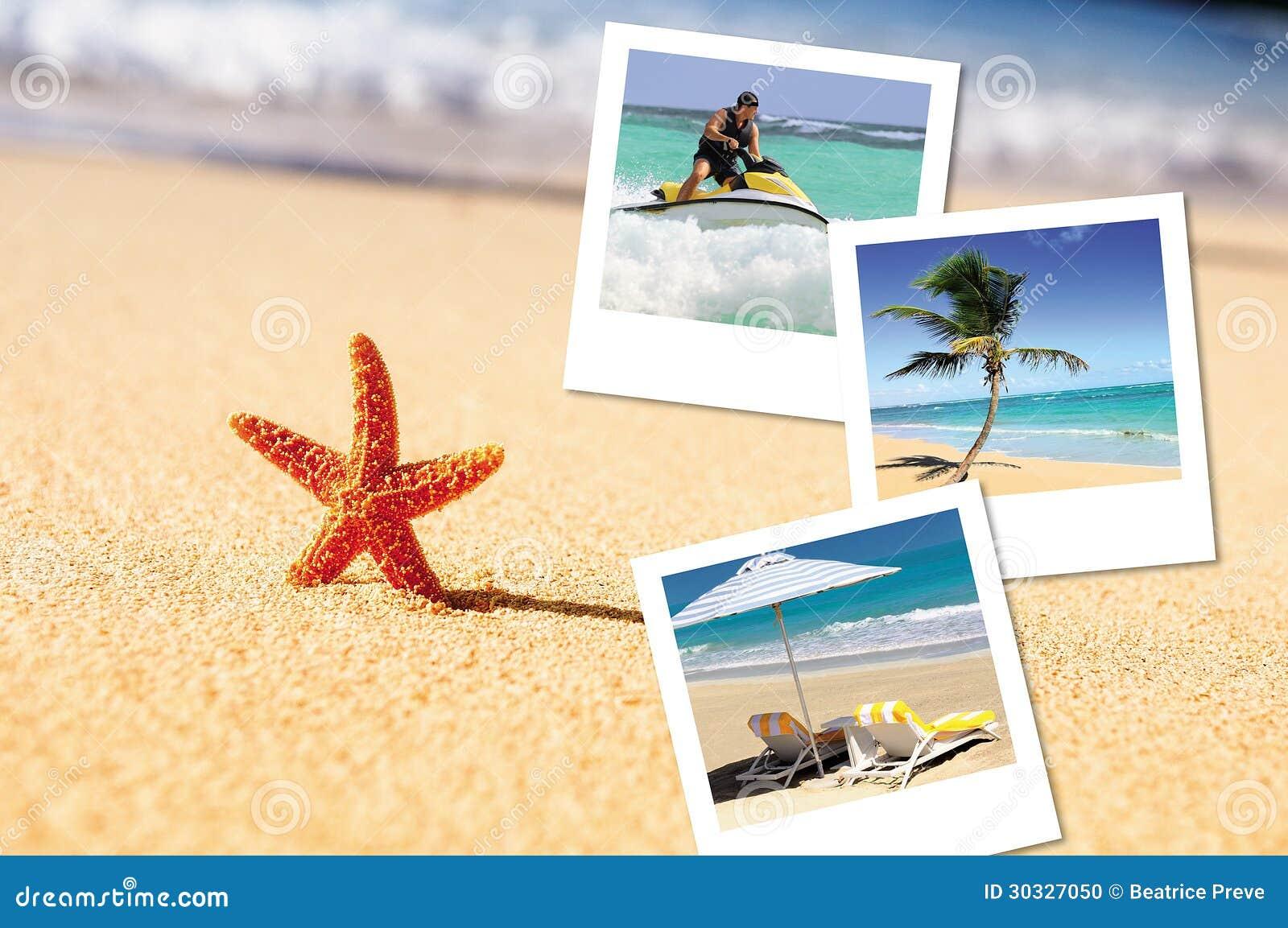 海海星和pics