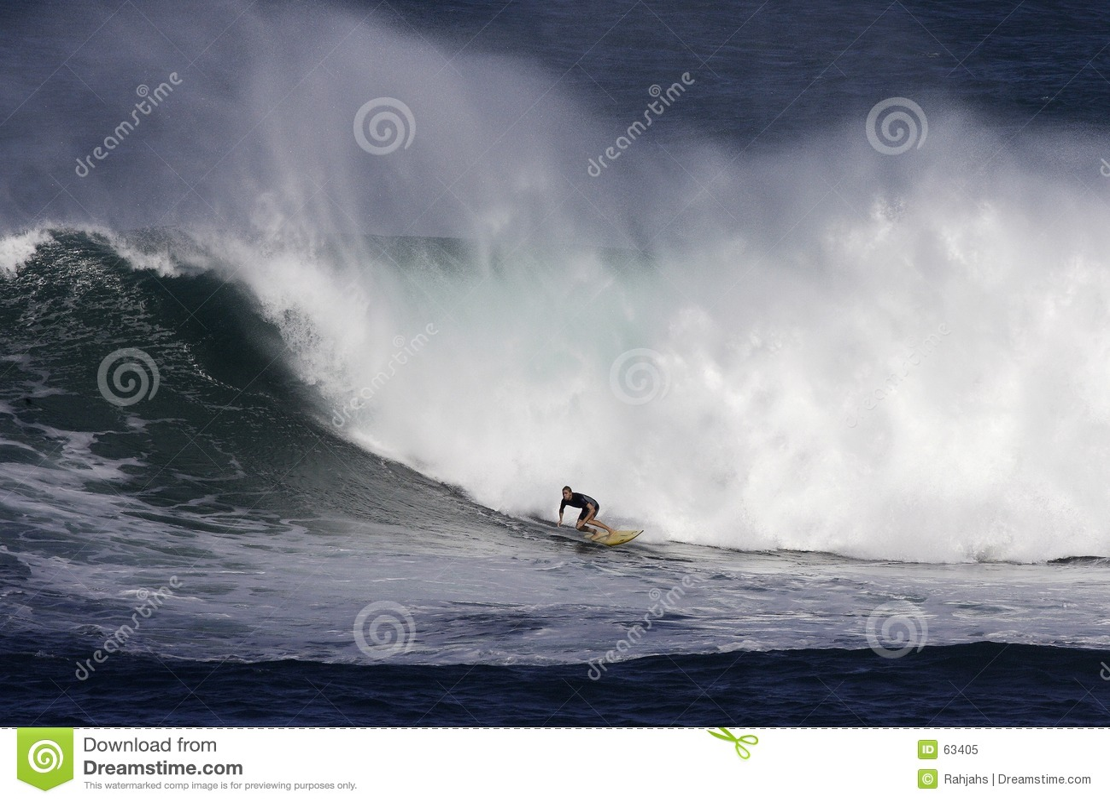 海湾冲浪者waimea