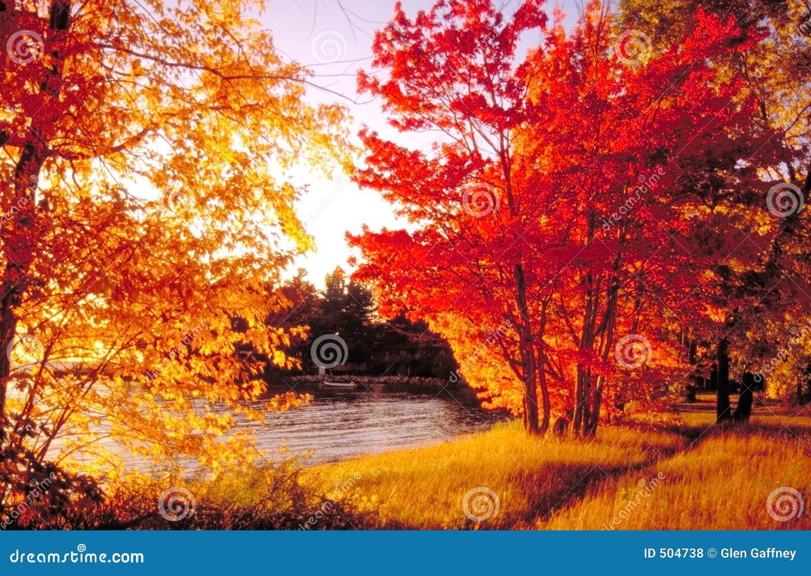 海湾北部颜色的秋天