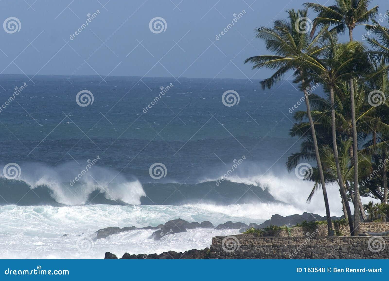海湾夏威夷northshore waimea通知