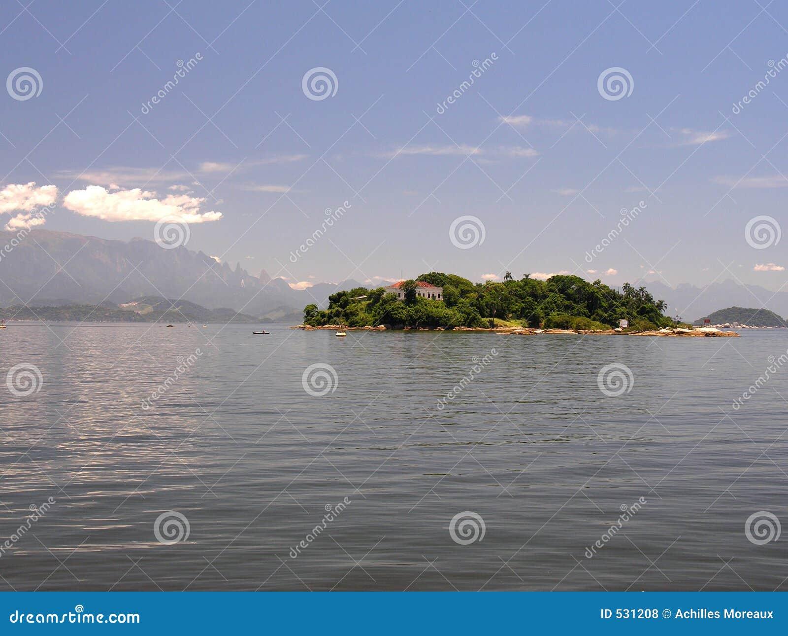 Download 海湾guanbara海岛 库存照片. 图片 包括有 本质, 外面, 室外, 海岛, 醉汉, 里约, 结构树, 安静 - 531208