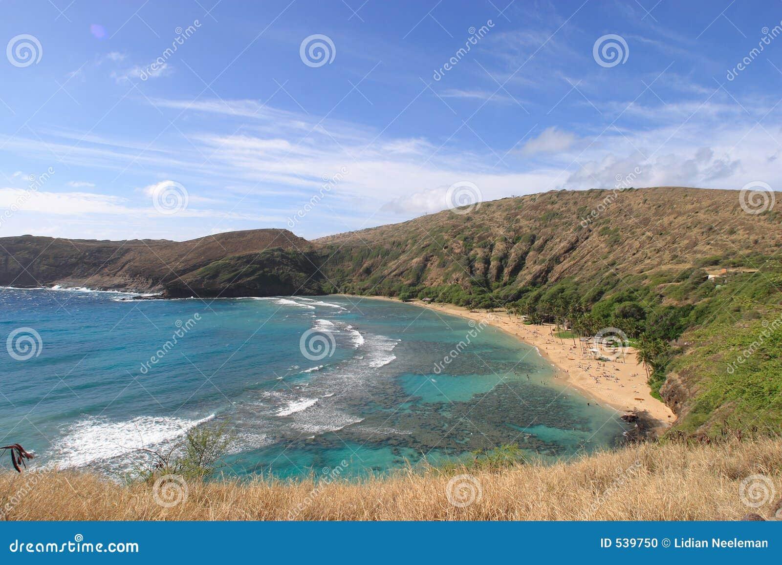 Download 海湾hanauma 库存照片. 图片 包括有 旅行, 假期, 晒裂, 旅游业, 地区, 节假日, 海洋, 游泳 - 539750