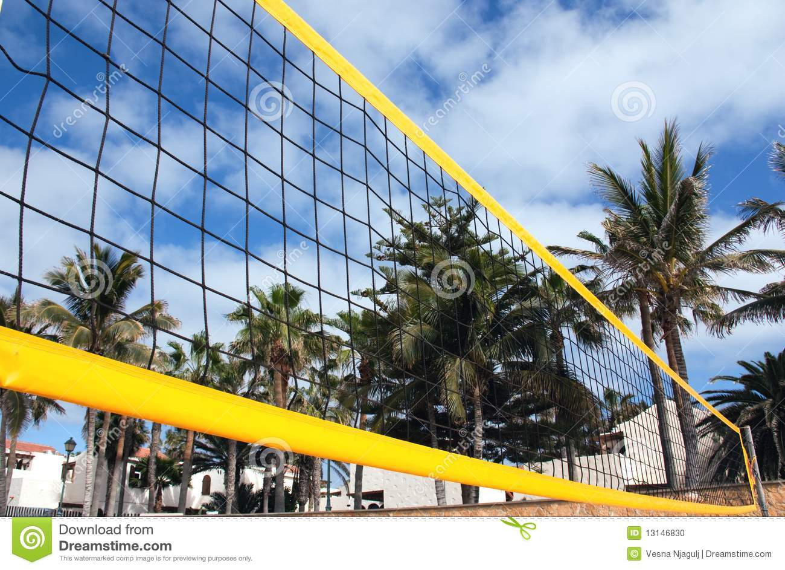海滩净排球