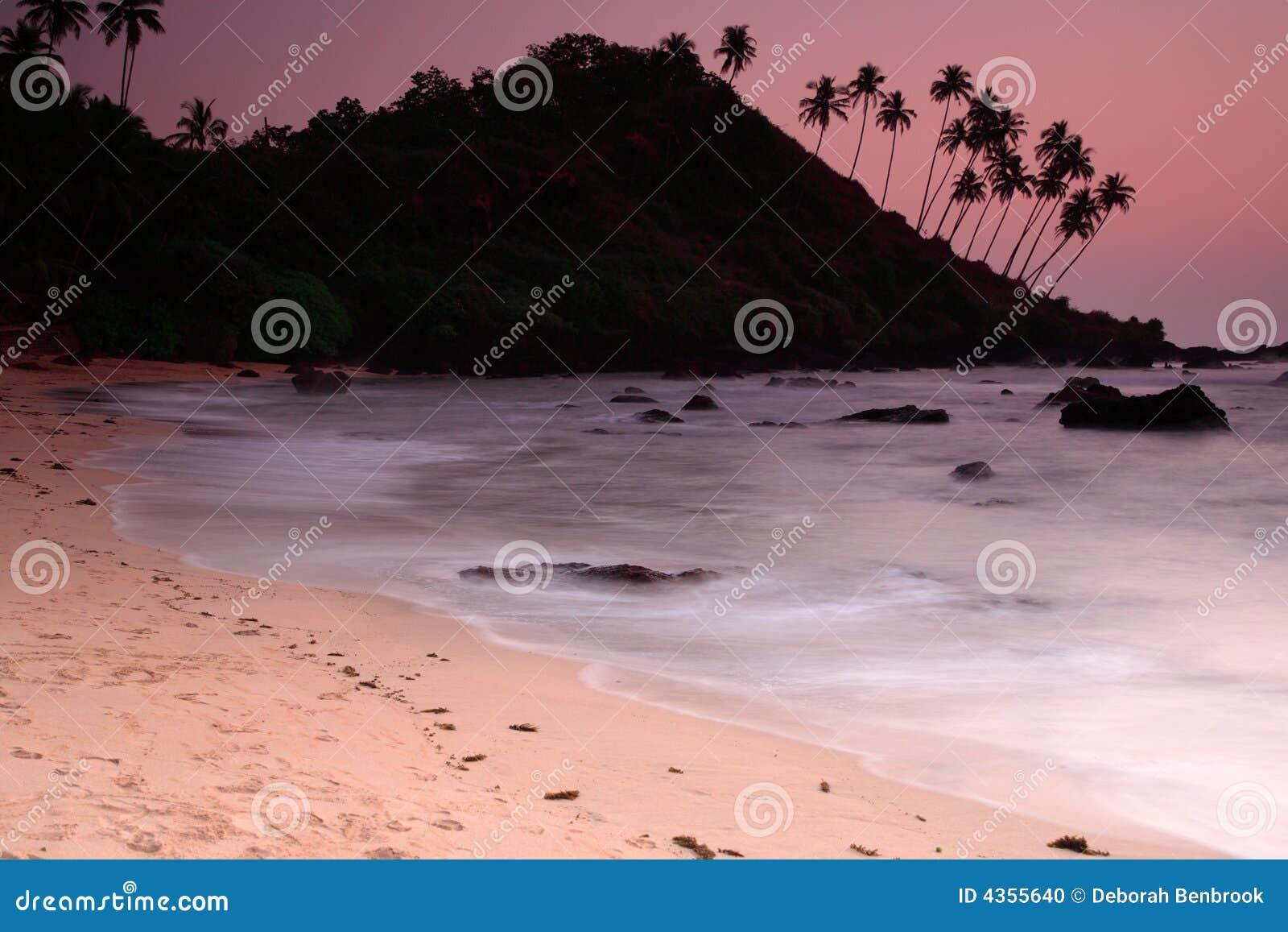 海滩可乐日落