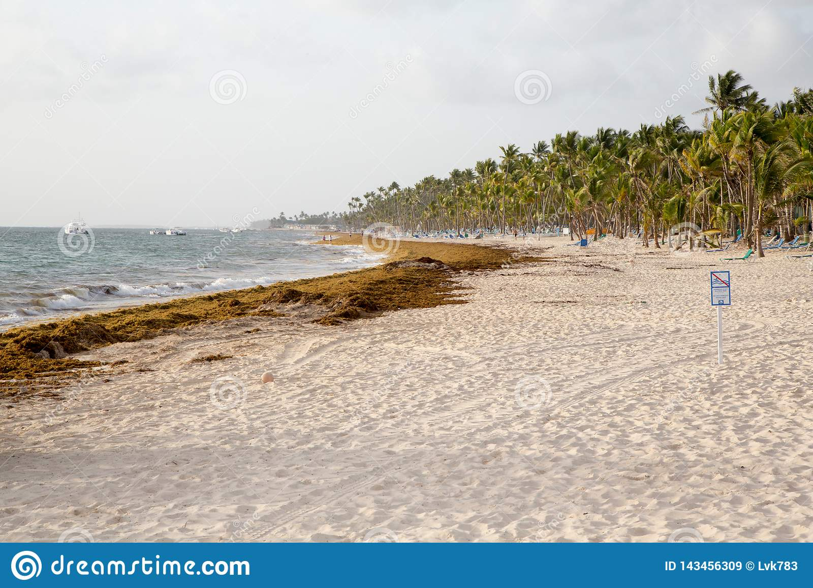 海滩在多米尼加共和国