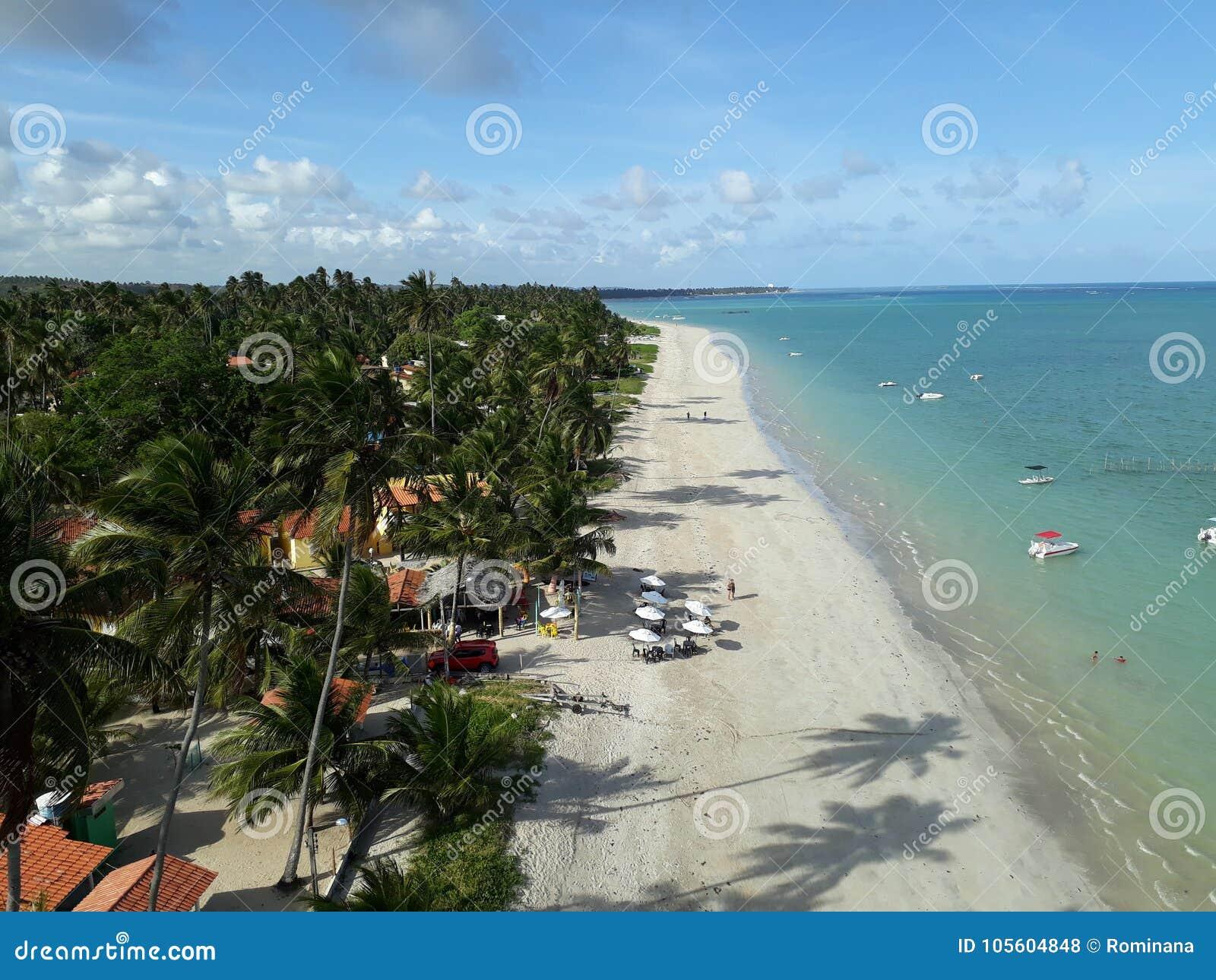 海滩在Maragogi,从空气的巴西