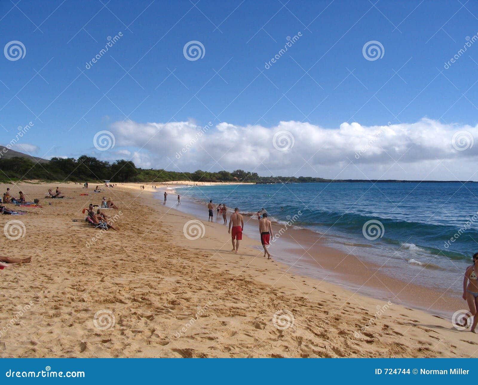 海滩大makena