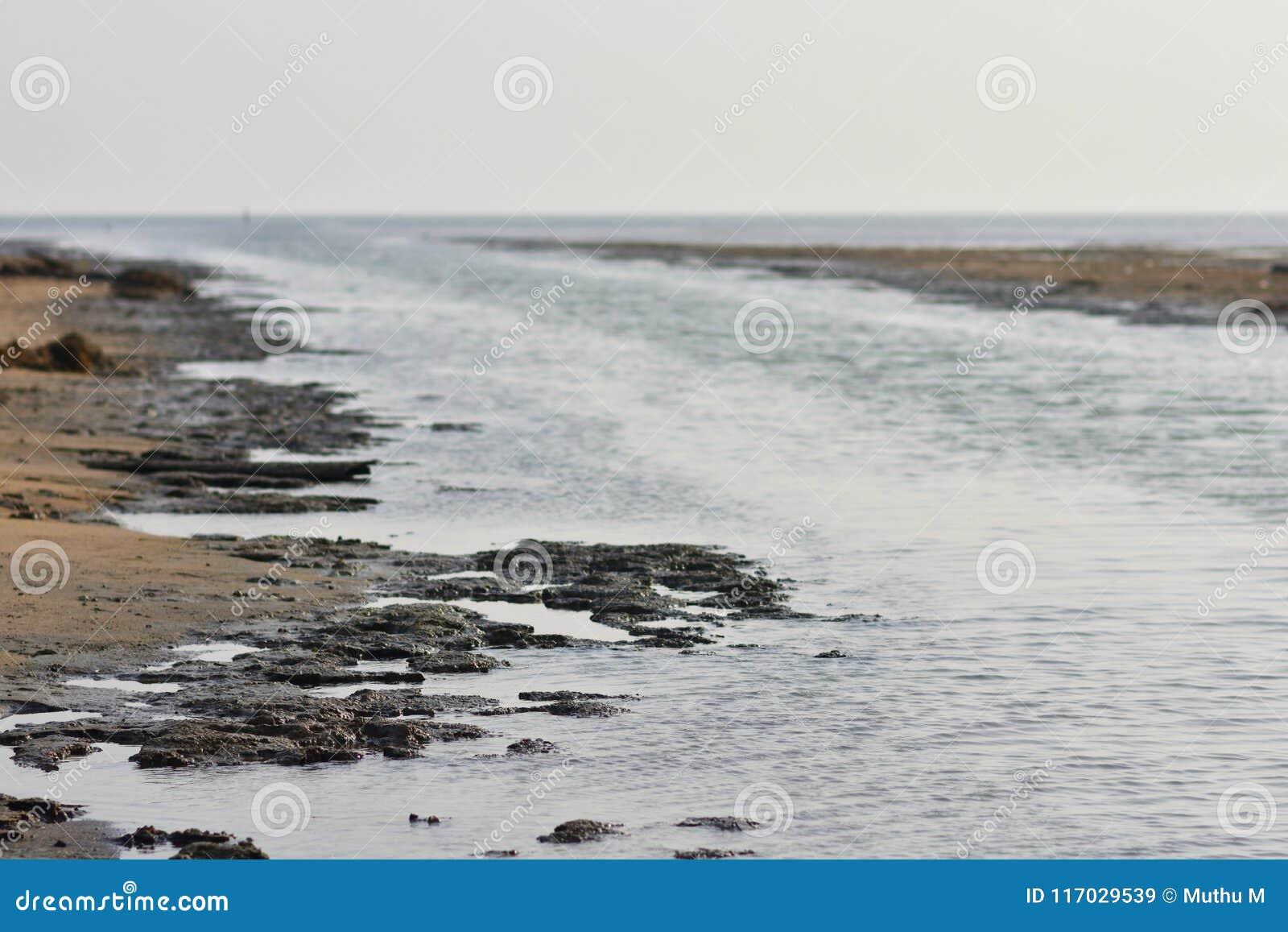 海滩死水背景和背景
