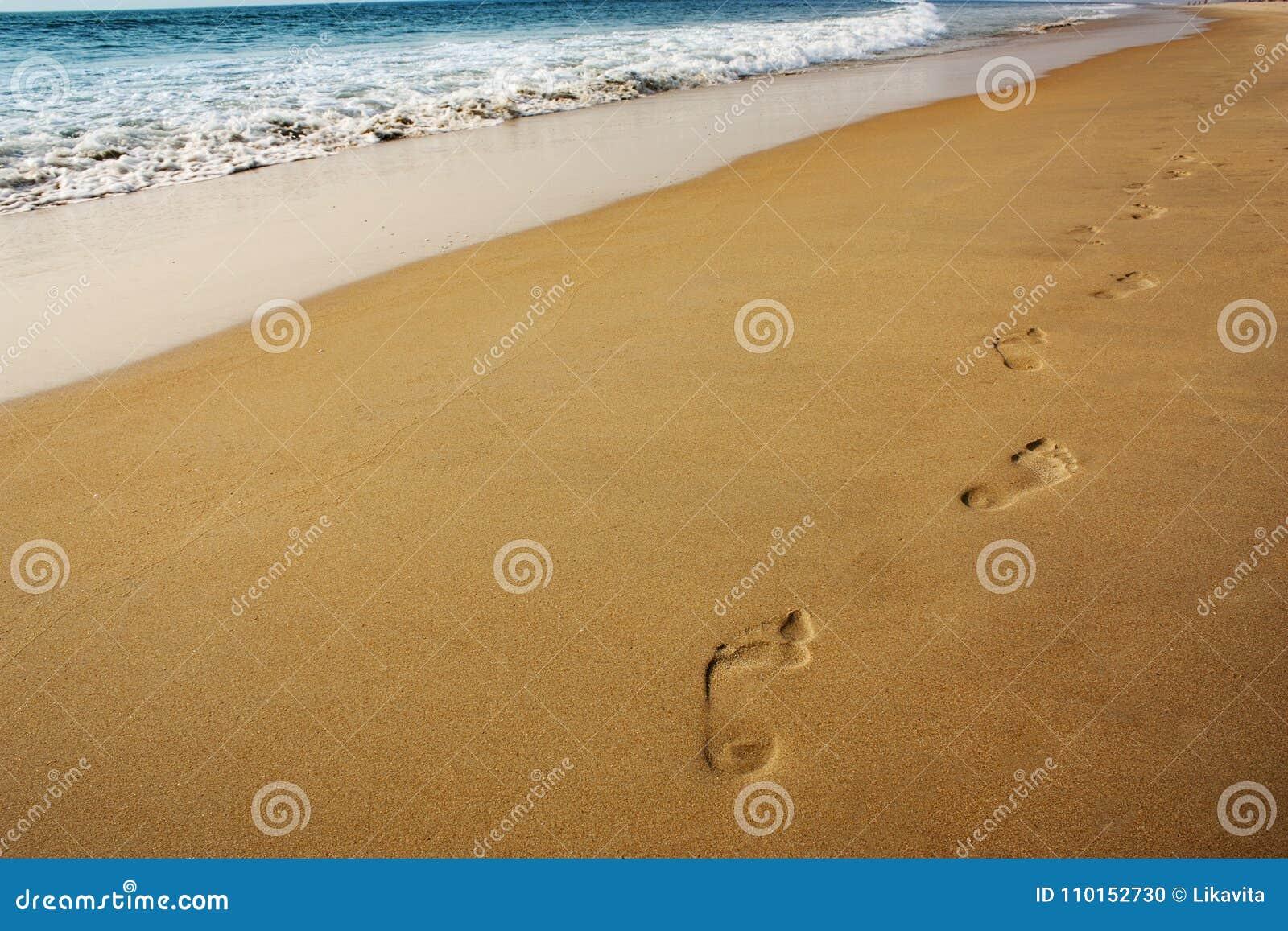 海滩美丽的作用脚印脚步起了波纹被风吹沙子含沙陈列的线索