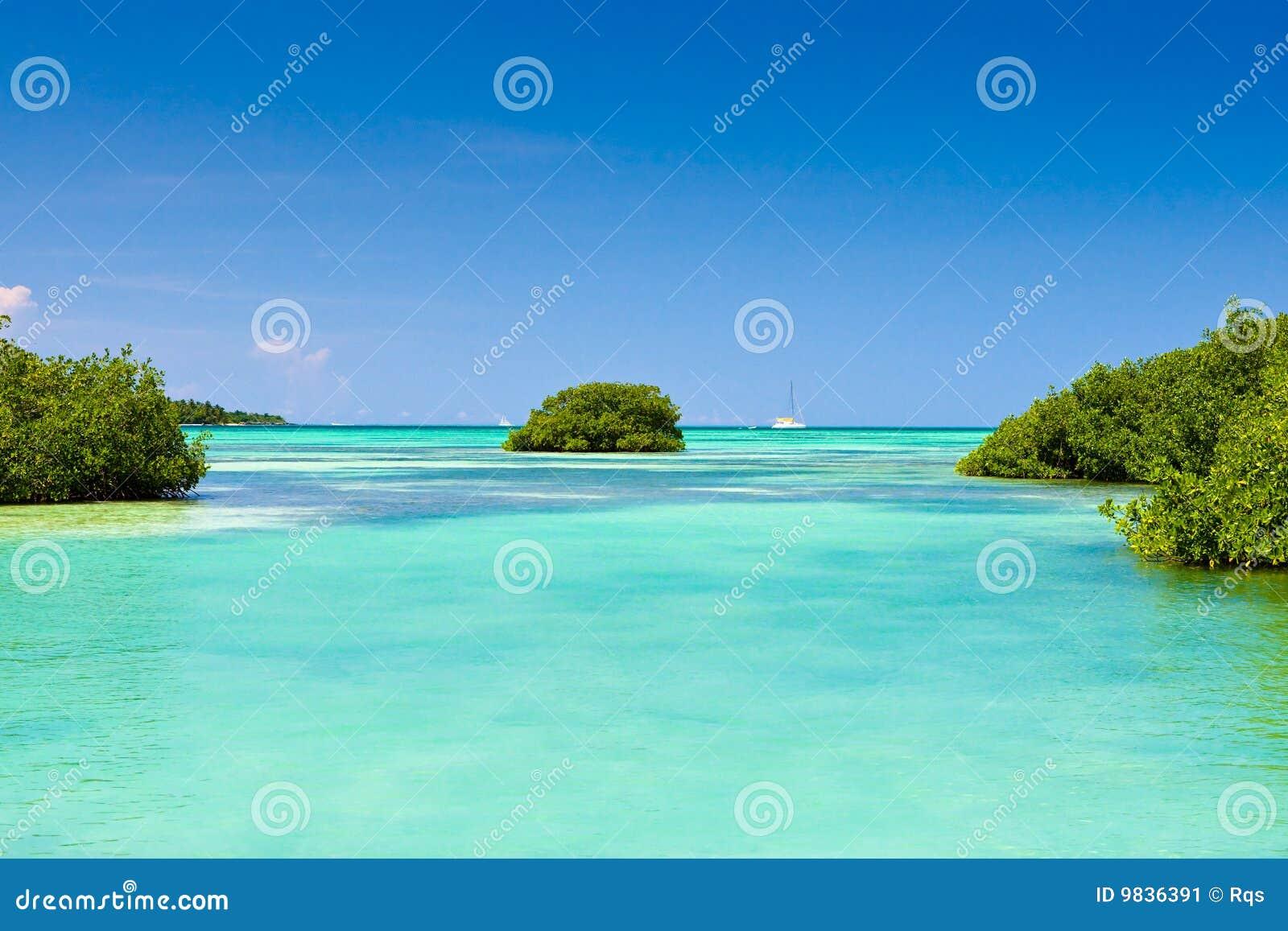 海滩蓝色海洋沙子天空白色.图片