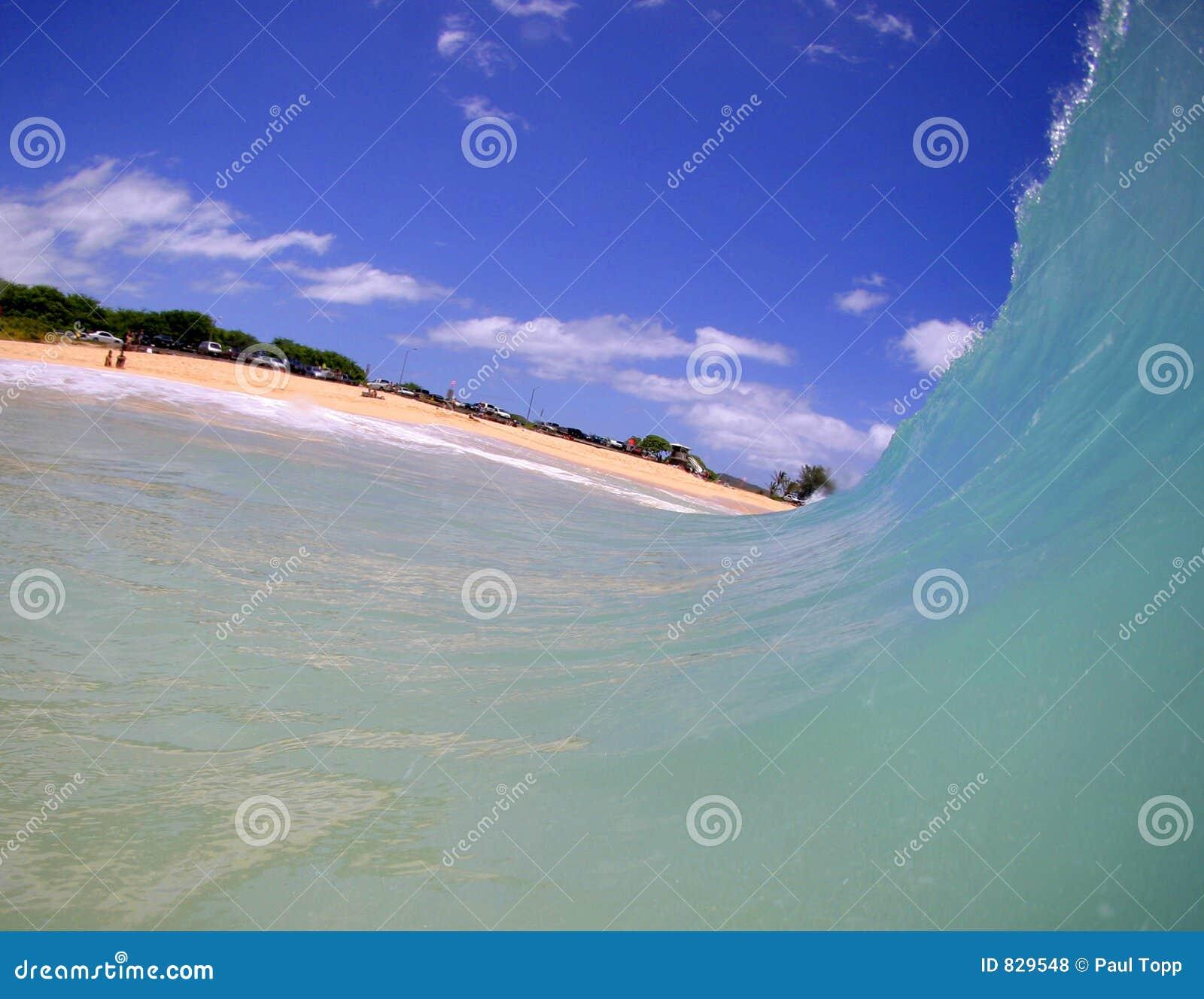 海滩蓝色移动朝水波