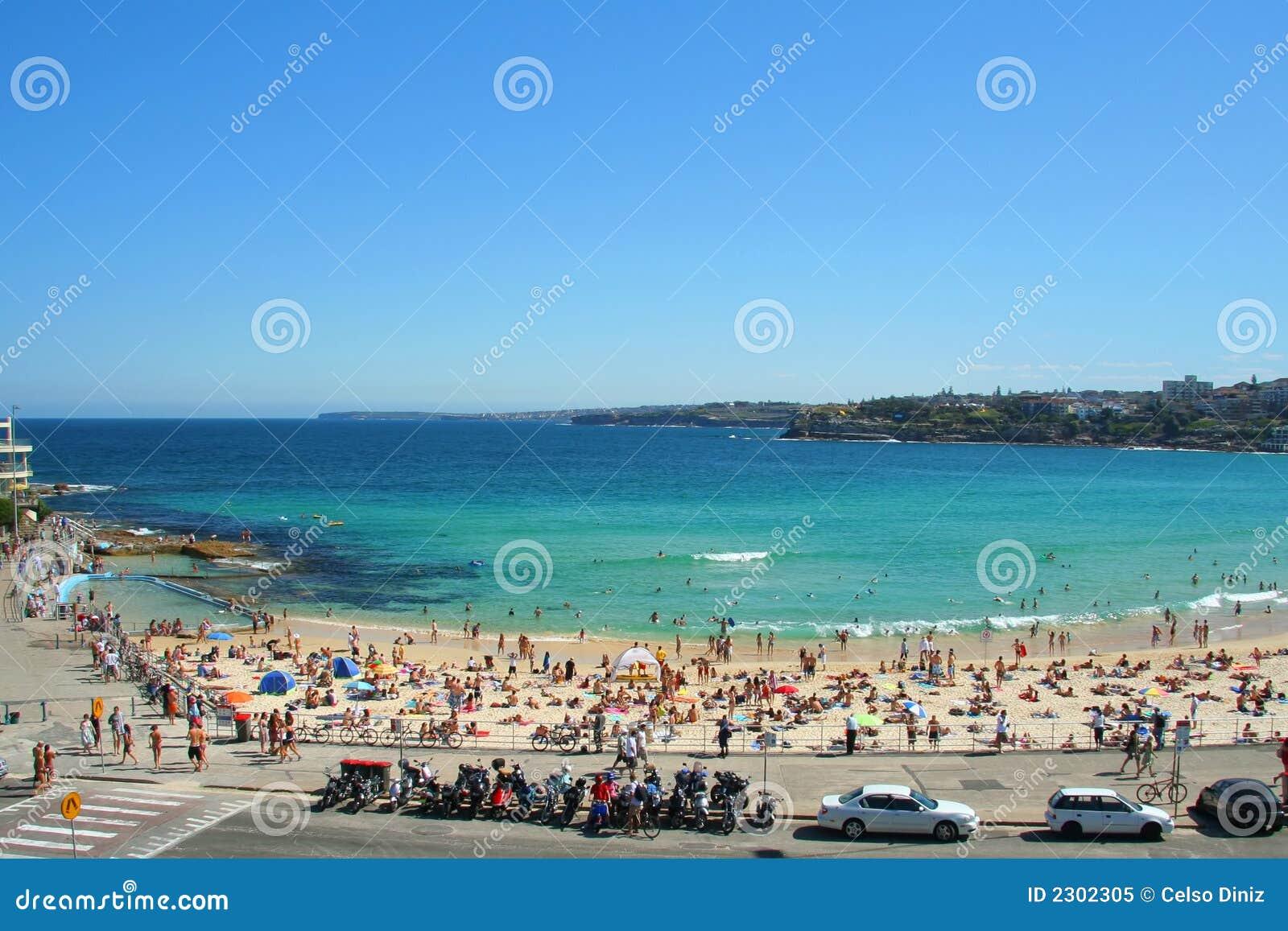 悉尼海滩丹b��(�9��_海滩bondi悉尼