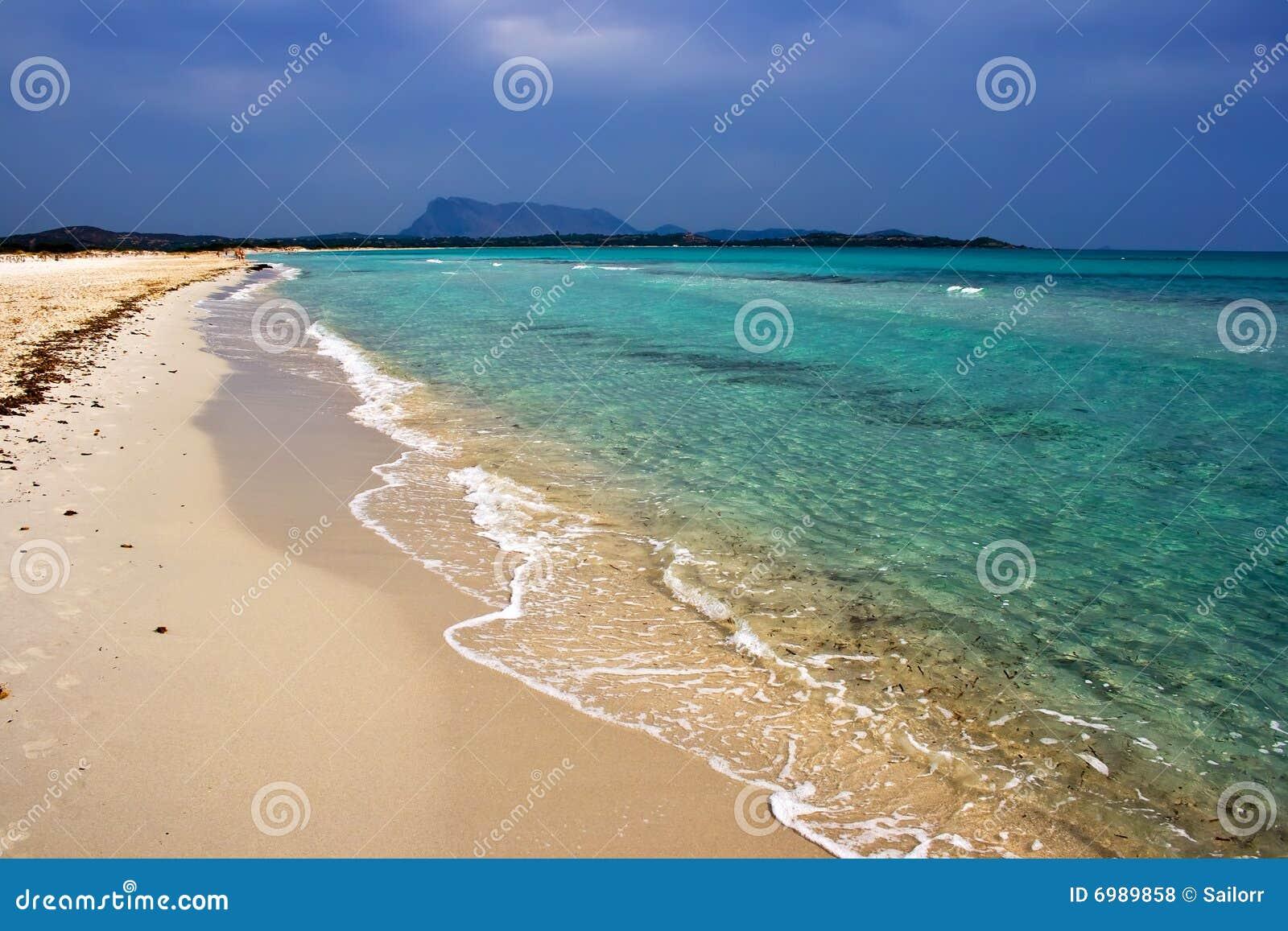 海滩cinta撒丁岛
