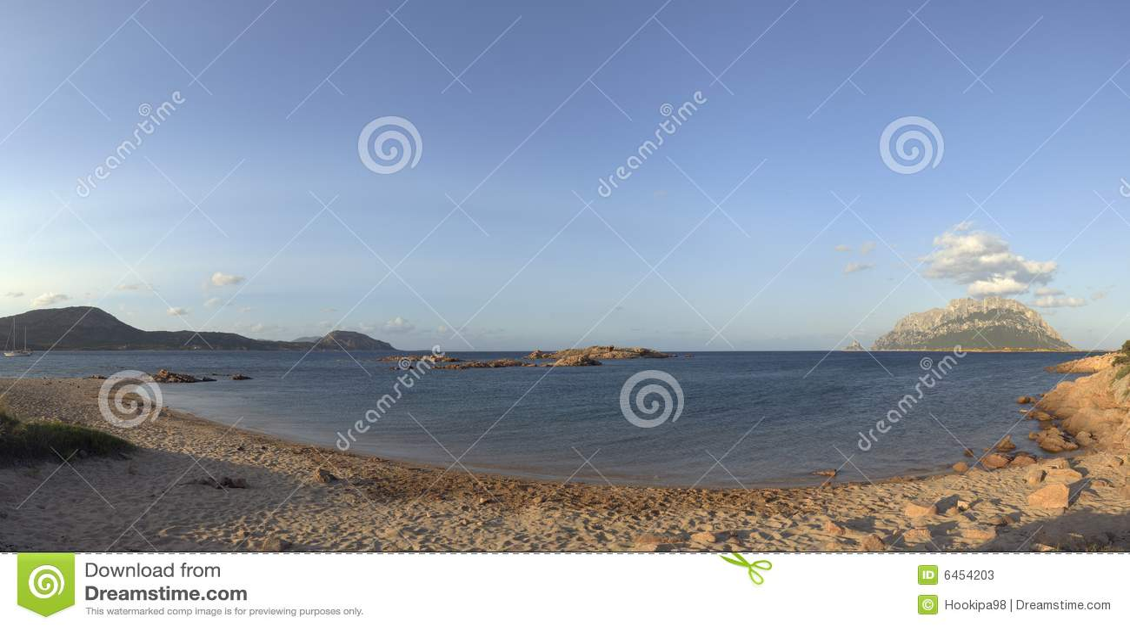 海滩corallina肋前缘