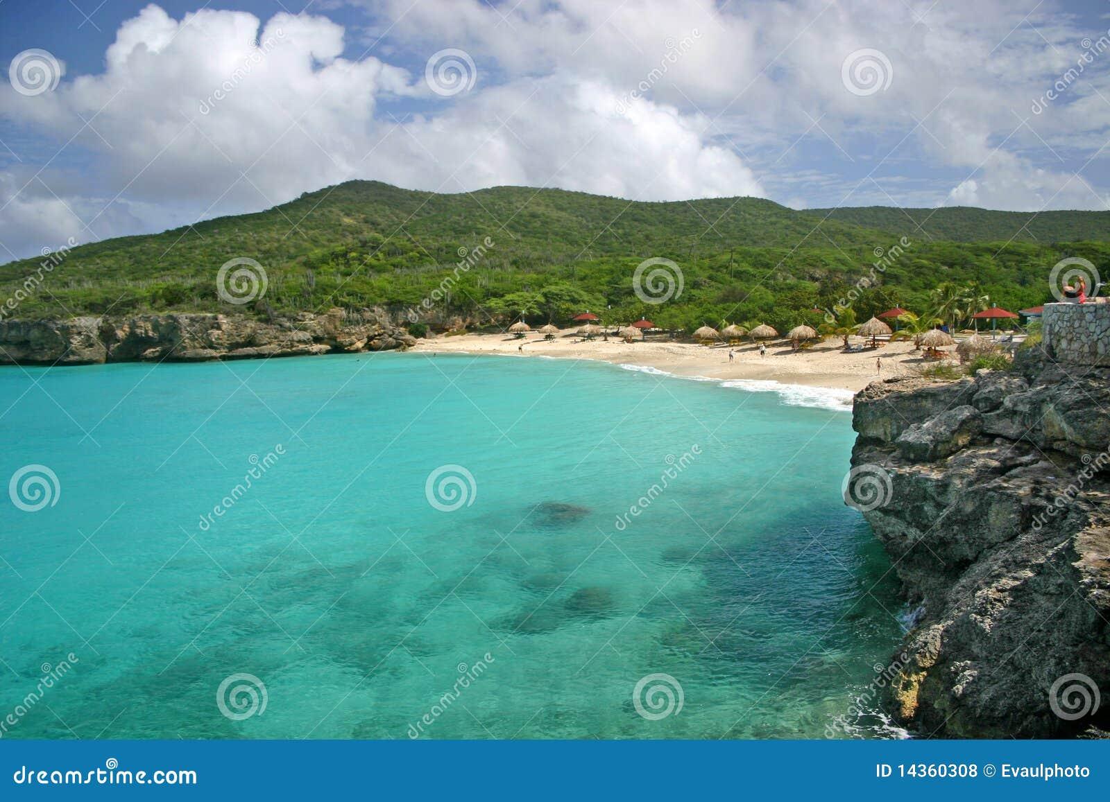 海滩curacao knip