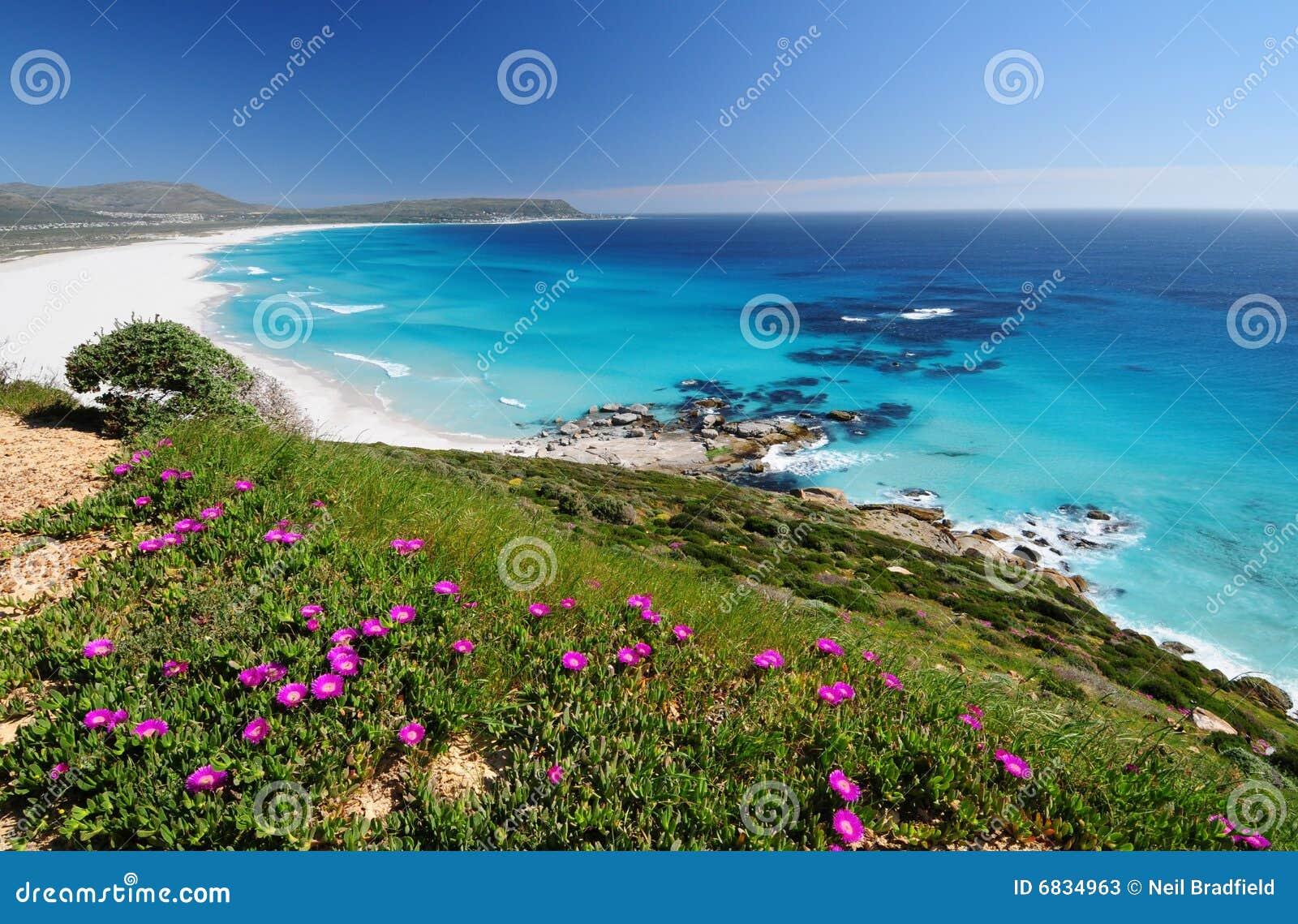 海角花卉远景