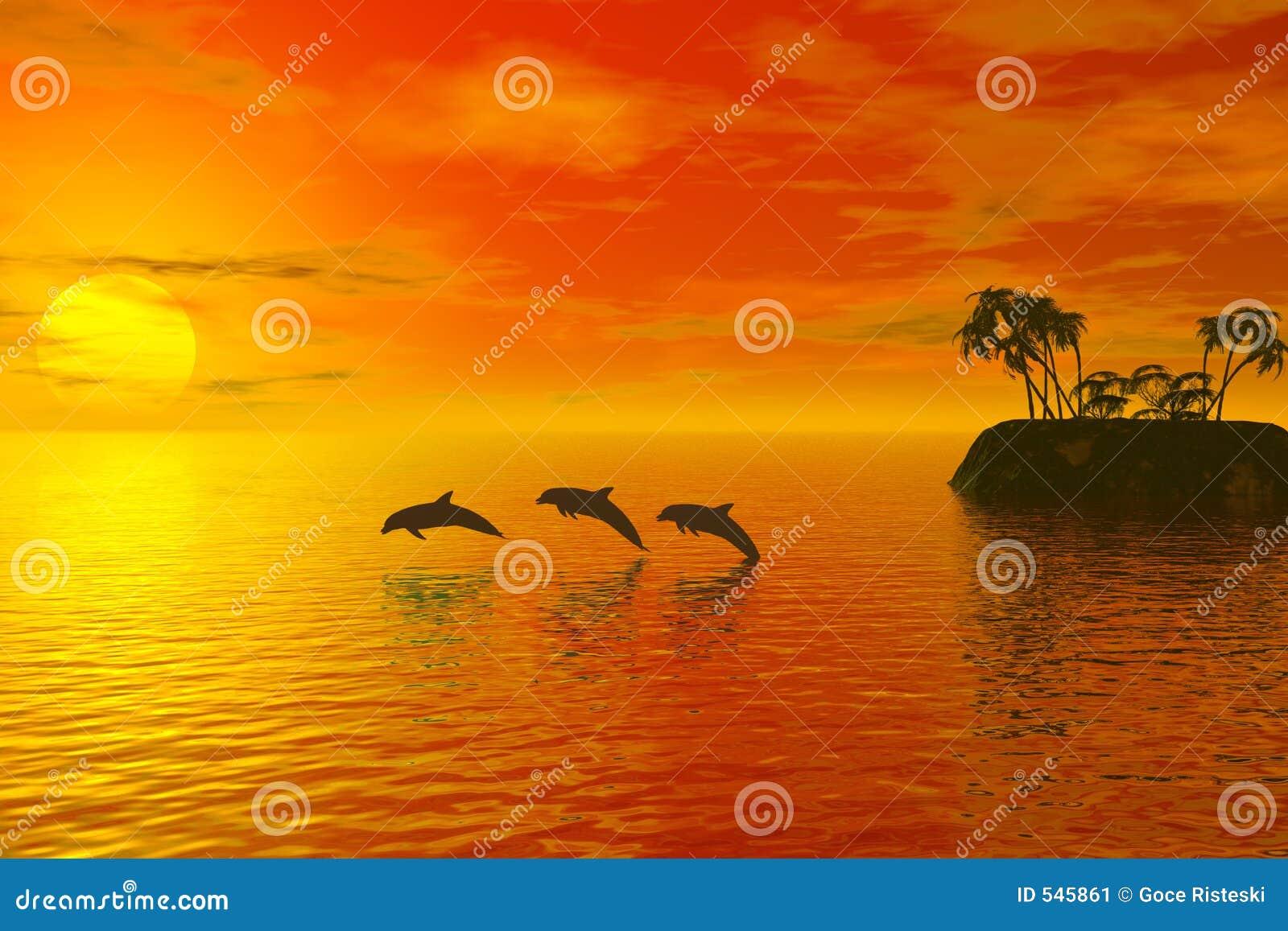 Download 海豚 库存例证. 插画 包括有 哺乳动物, 天空, 微明, 海岛, 黄昏, 海洋, 夏天, 和平, 海豚, 海运 - 545861
