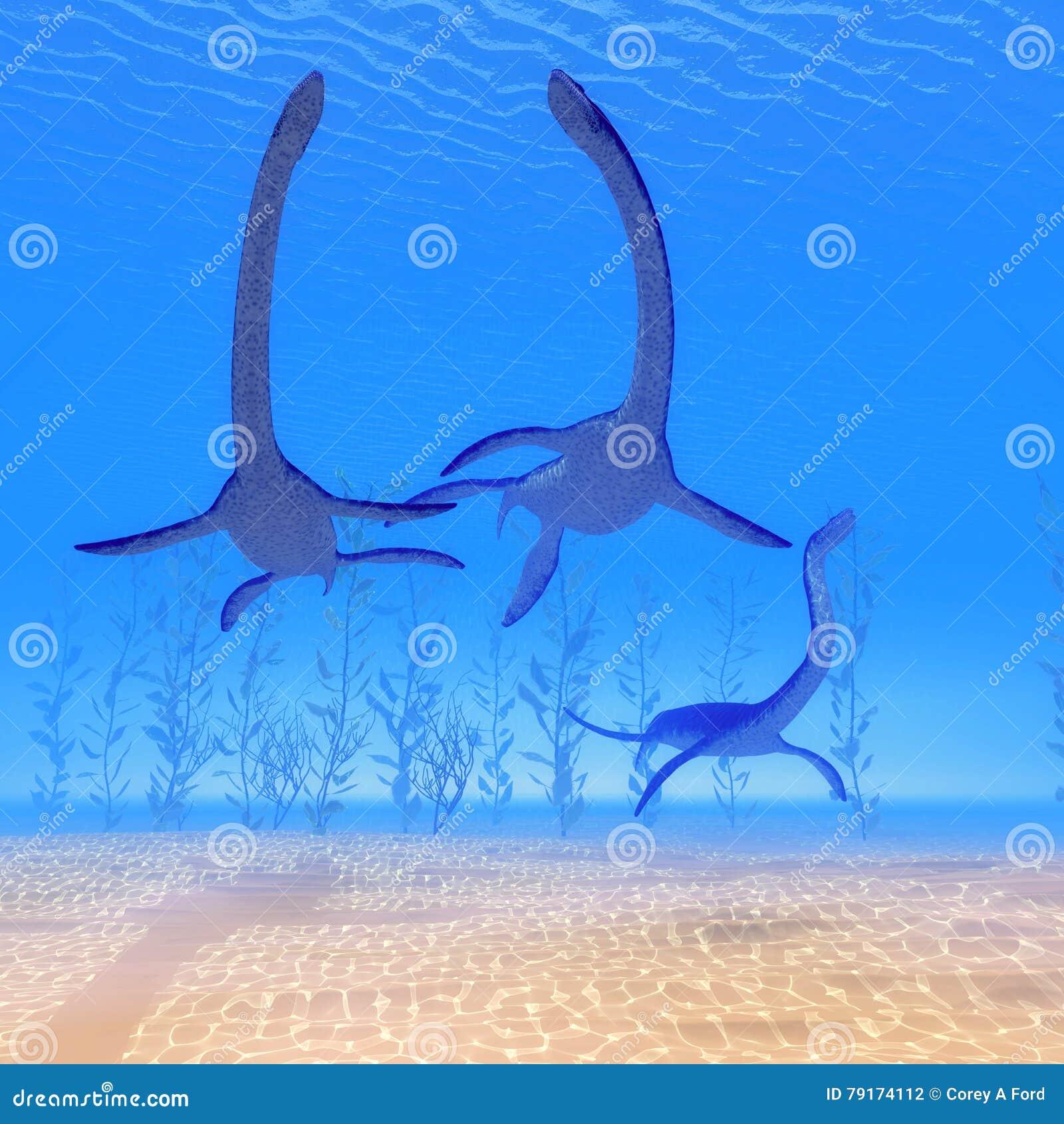 海里蛇颈龙的爬行动物图片