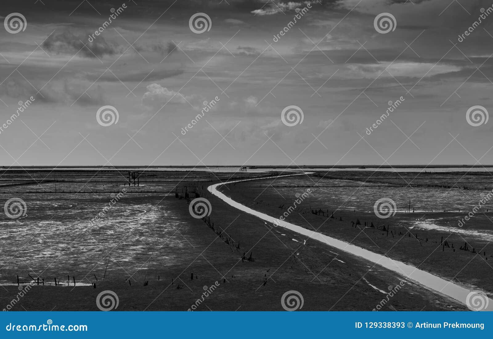 海风景浪潮的和沿绕的灰色天空和白色云彩浇灌运河 在海岸黑白图片的泥滩