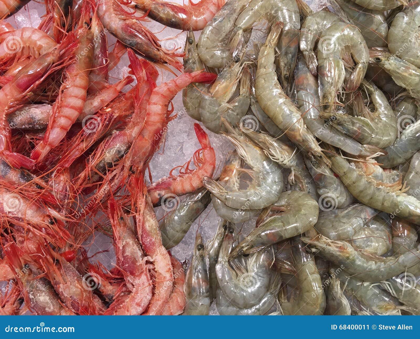 海鲜-大虾-虾图片