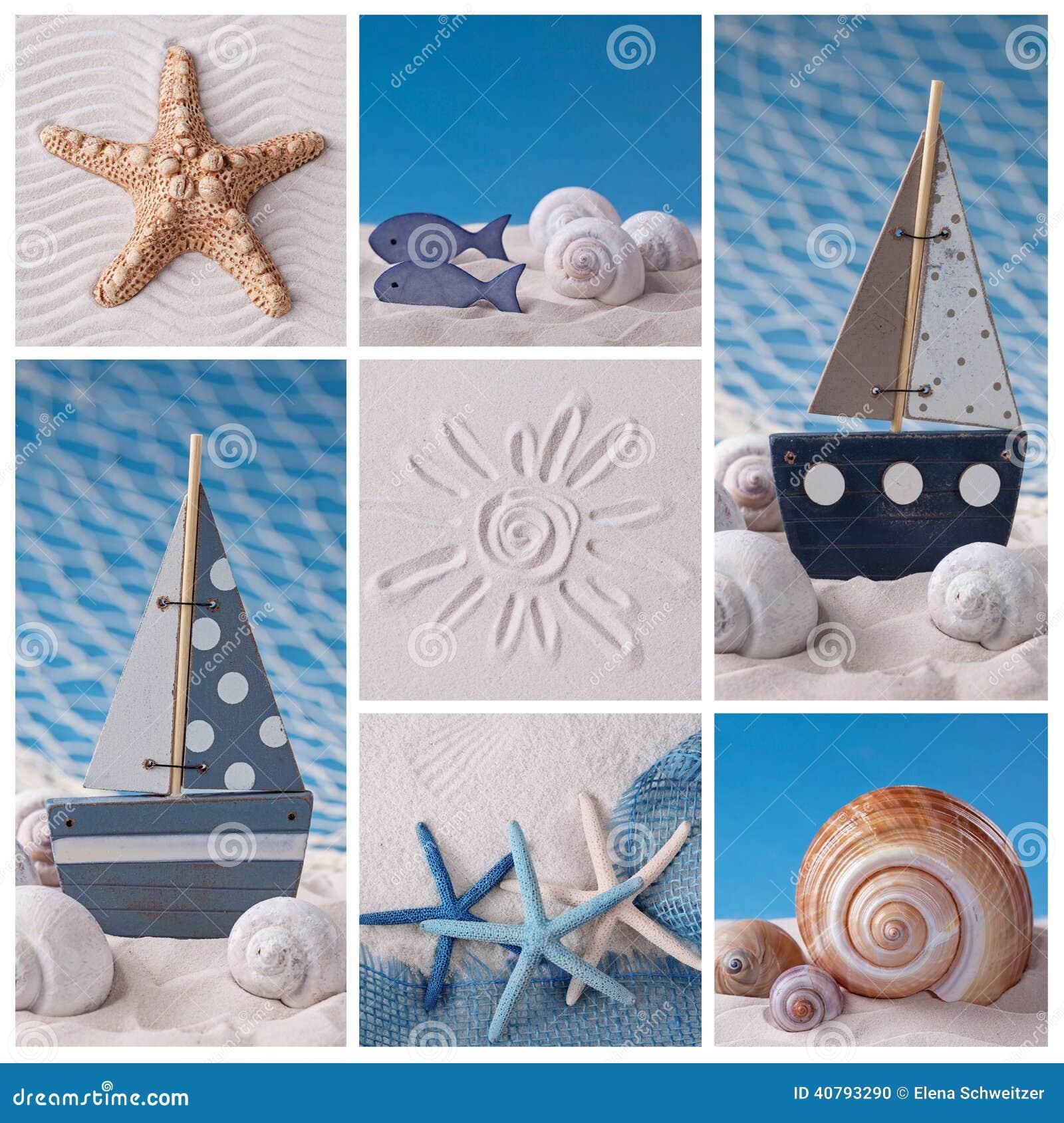 海洋生物拼贴画