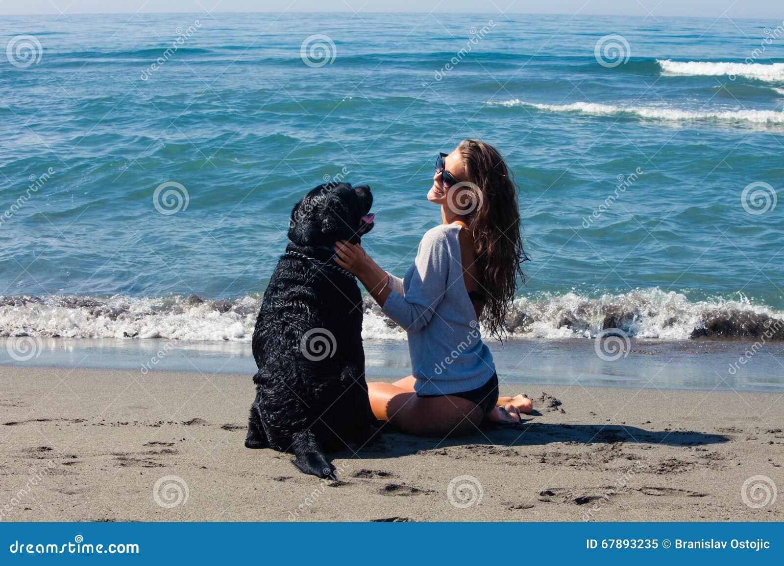 海滩的朋友