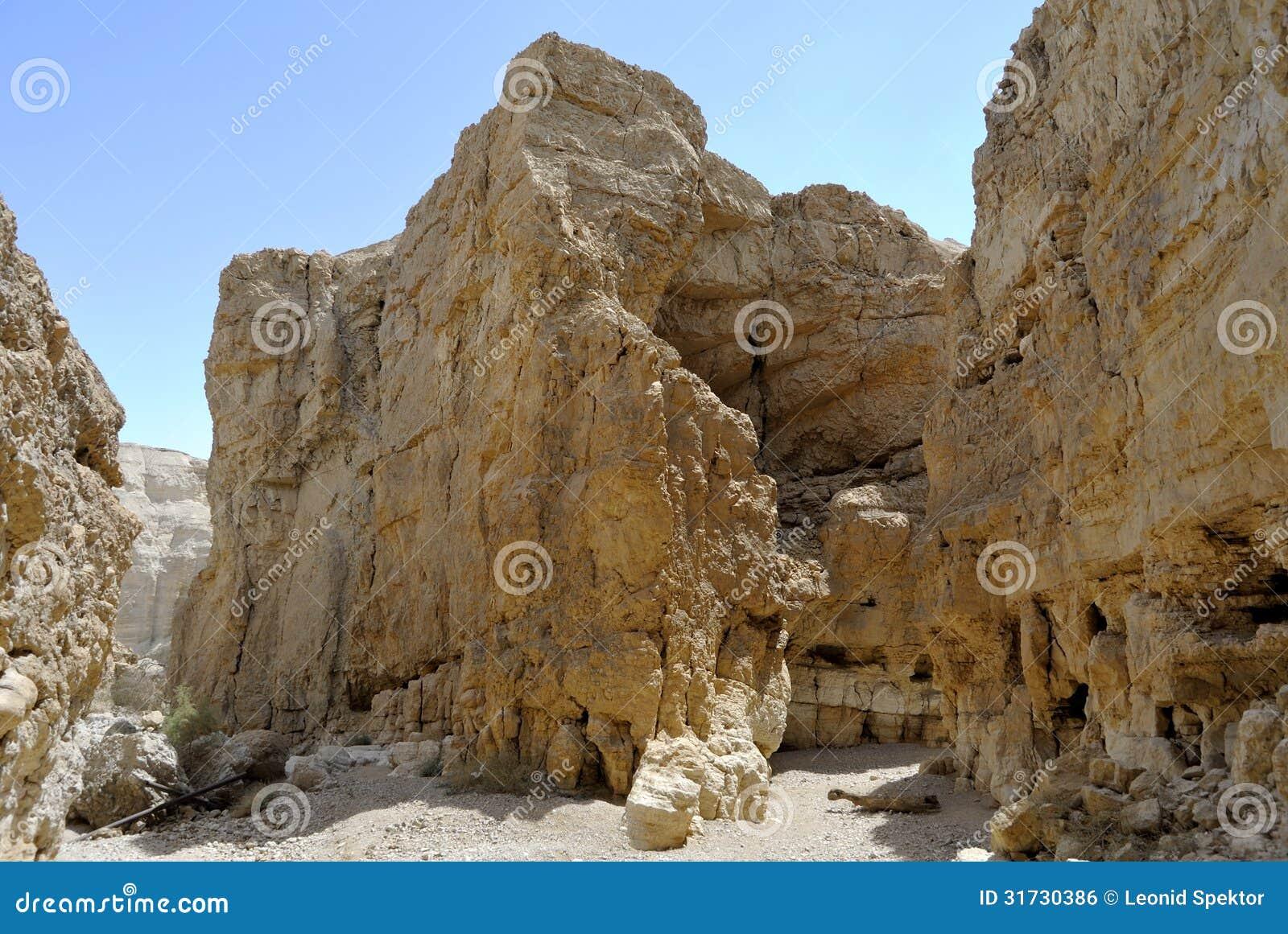 深峡谷在犹太沙漠。