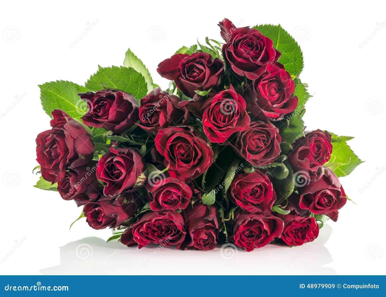 深宫风云之玫瑰_深红玫瑰花束