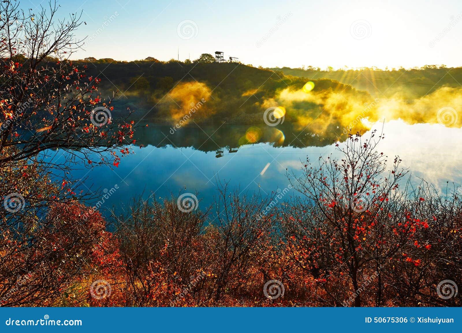 Download 深蓝湖和金黄阳光日出 库存照片. 图片 包括有 阳光, 区域, 薄雾, 节日, 森林, 城市, 汉语, beautifuler - 50675306